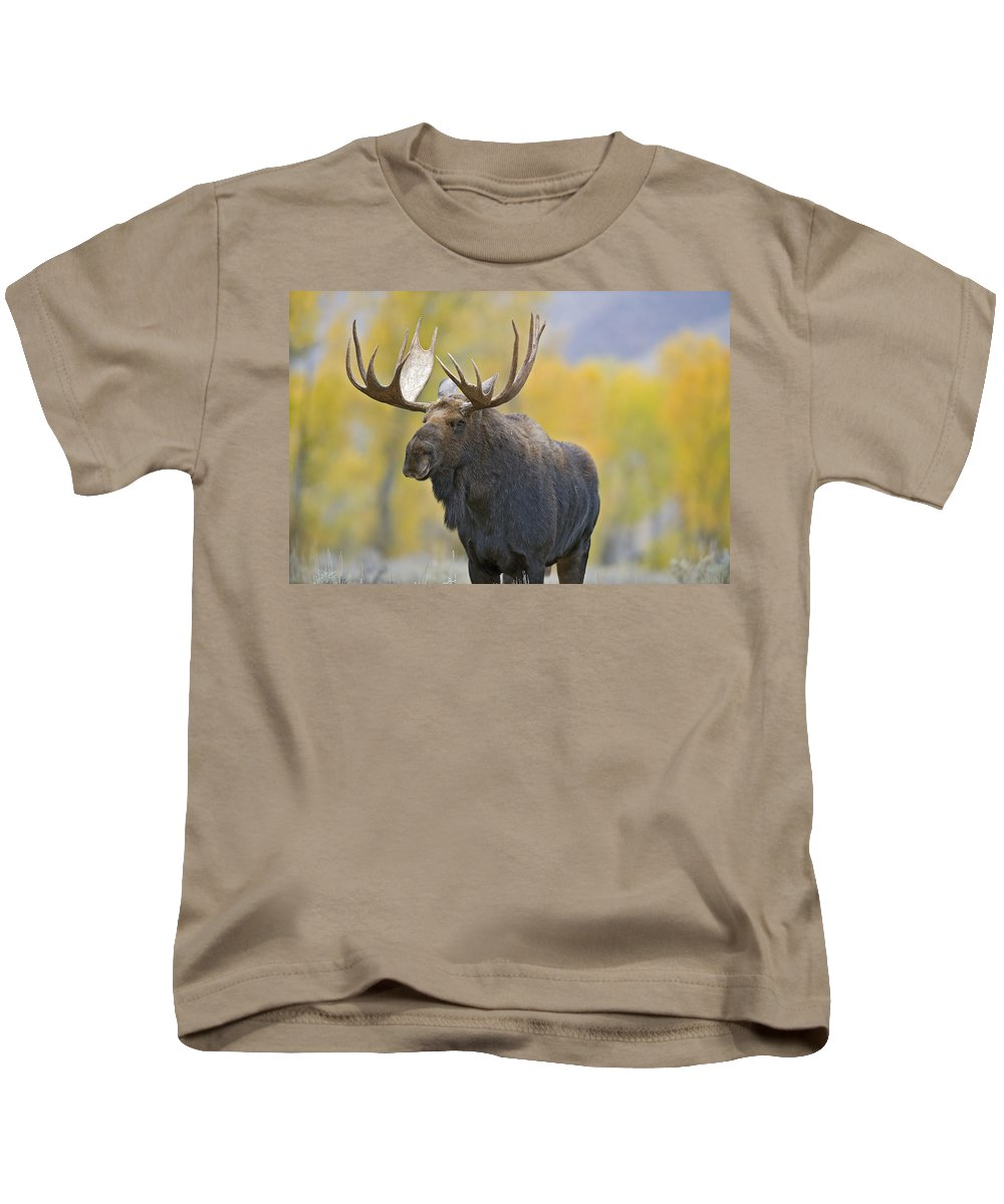 Autumn Kids T-Shirt featuring the photograph Bull Moose In Autumn by Gary Langley