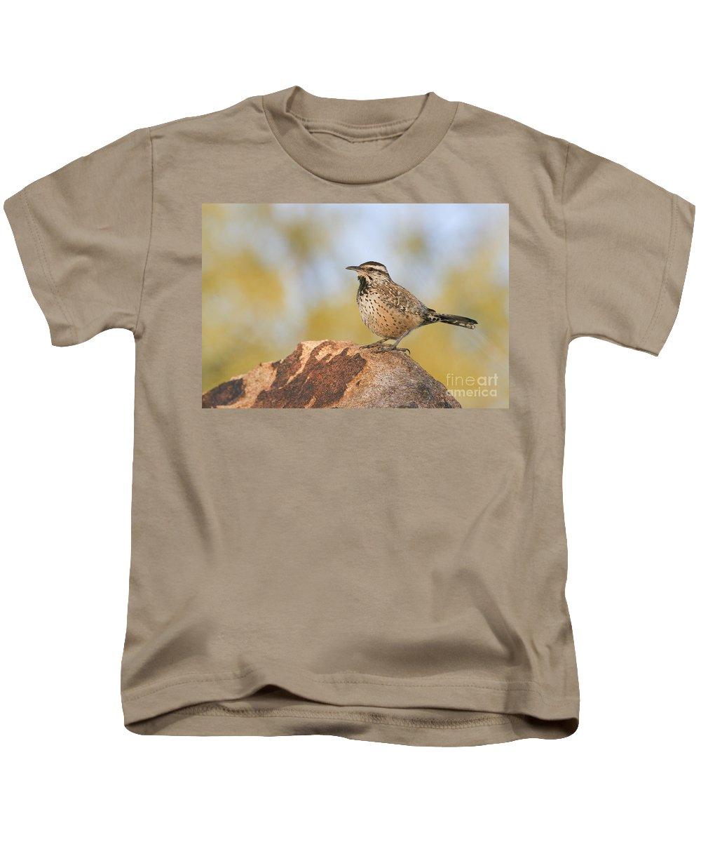 Cactus Wren Kids T-Shirt featuring the photograph Cactus Wren On Rock by Bryan Keil