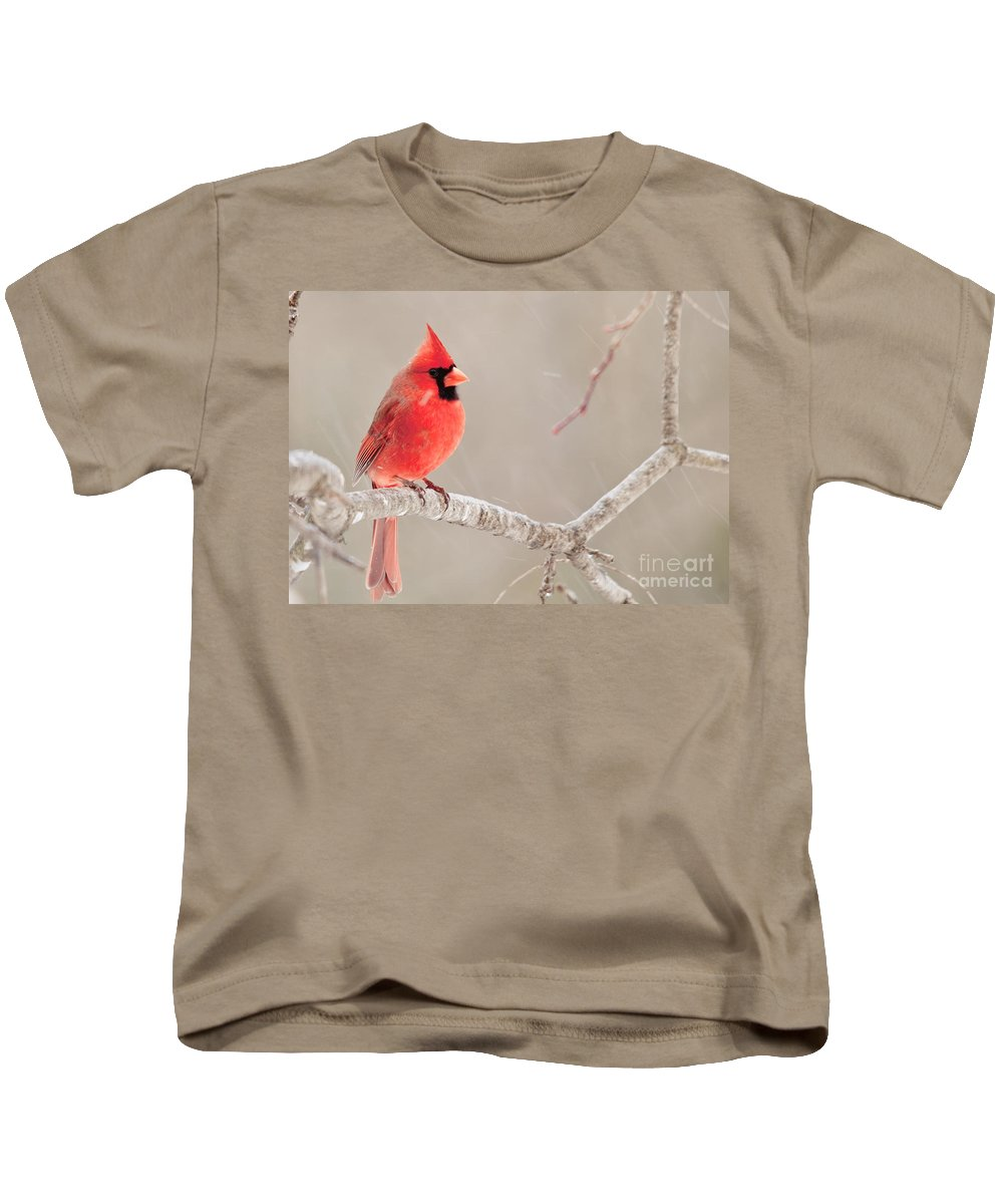 Kids T-Shirt featuring the photograph Cardinal In The Rain by Cheryl Baxter