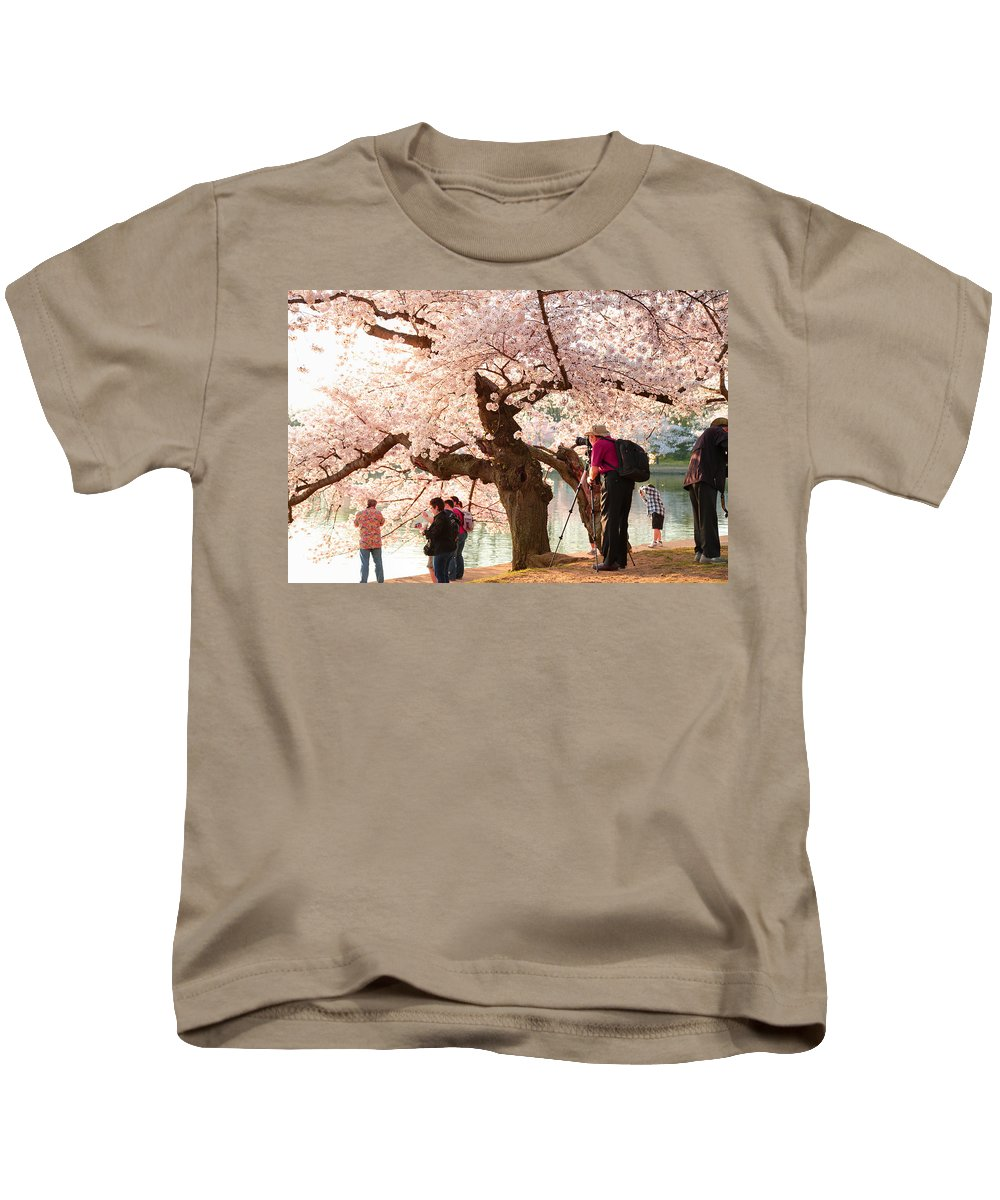 Architectural Kids T-Shirt featuring the photograph Cherry Blossoms 2013 - 006 by Metro DC Photography