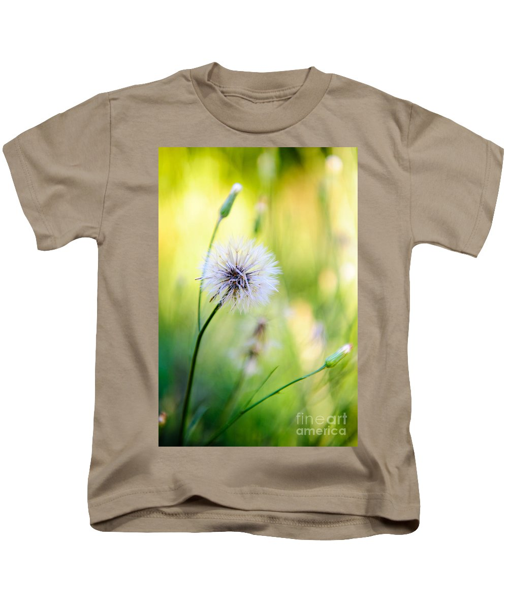 Rt Kids T-Shirt featuring the photograph Dandelion Wishes by Charles Dobbs