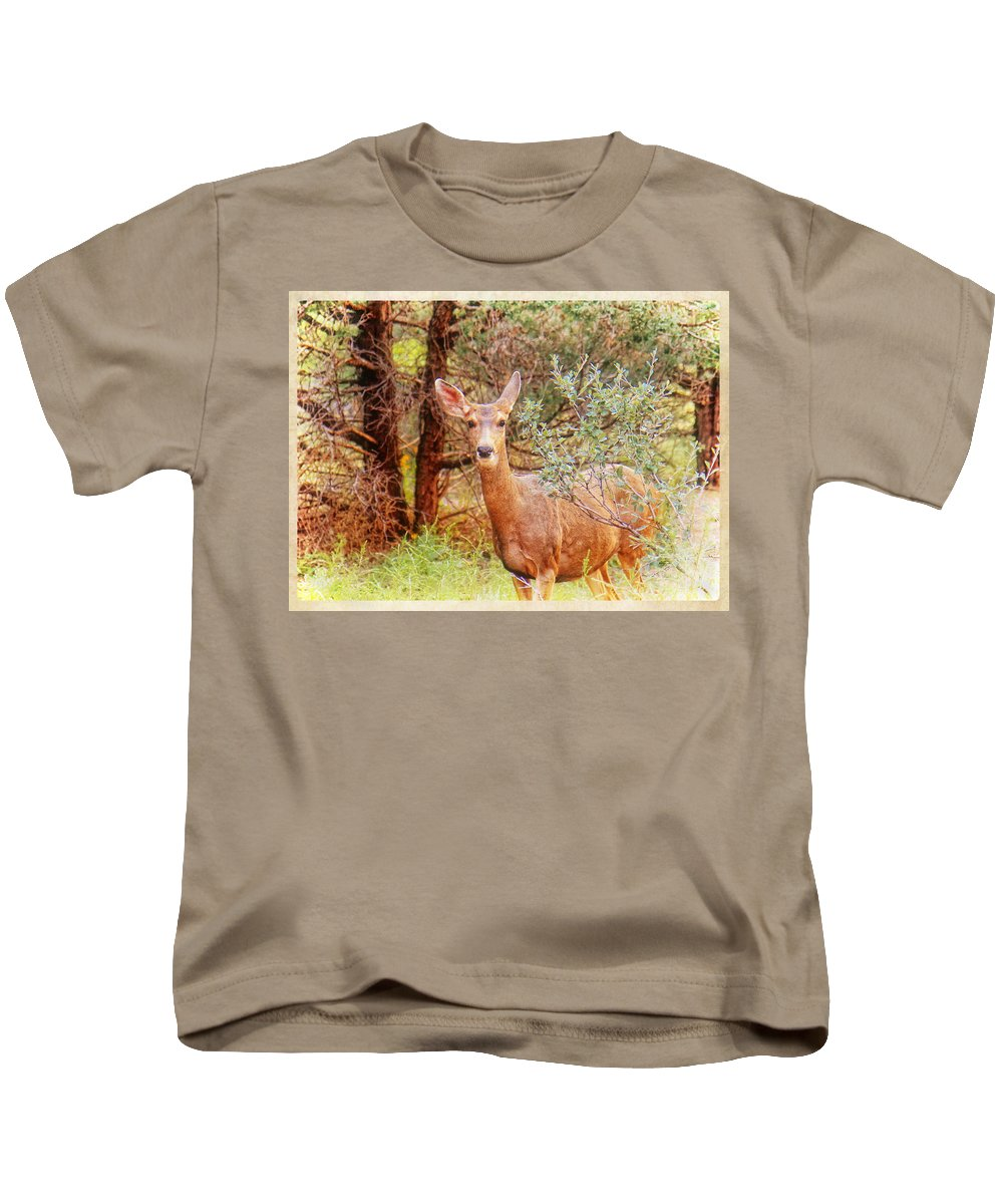 Colorado Kids T-Shirt featuring the photograph Deer In Forest by Donna Haggerty