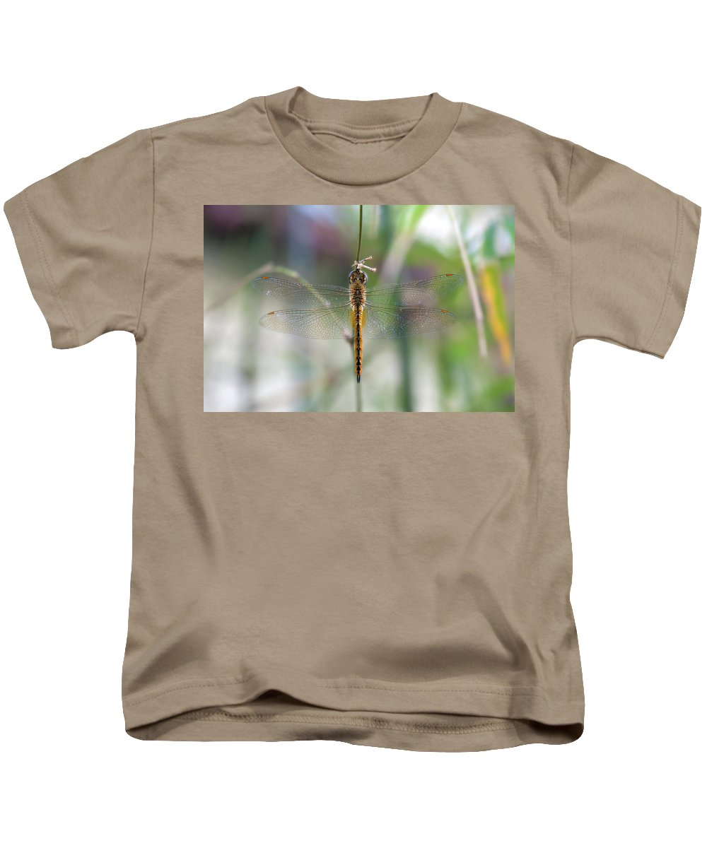 Dragonfly Kids T-Shirt featuring the photograph Dragonfly Closeup by Jit Lim