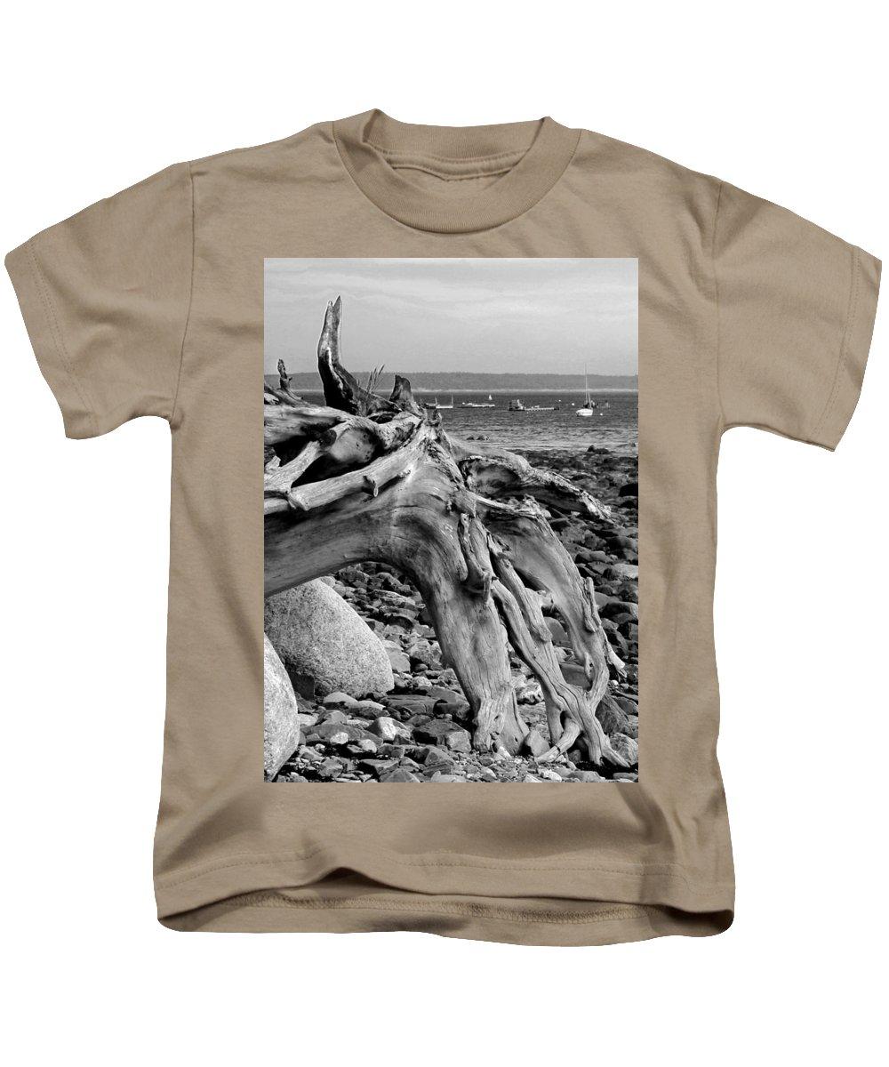 Driftwood On Rocky Beach Kids T-Shirt featuring the photograph Driftwood On Rocky Beach by Jemmy Archer