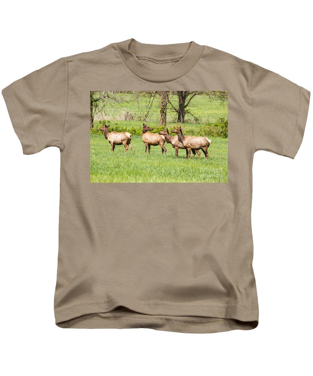Elk Kids T-Shirt featuring the photograph Elk In The Meadow by Terri Morris