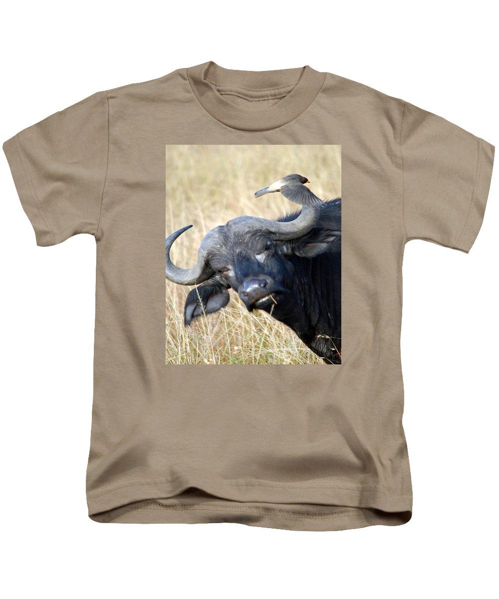 Buffalo Kids T-Shirt featuring the photograph Flicking The Bird by Pamela Peters
