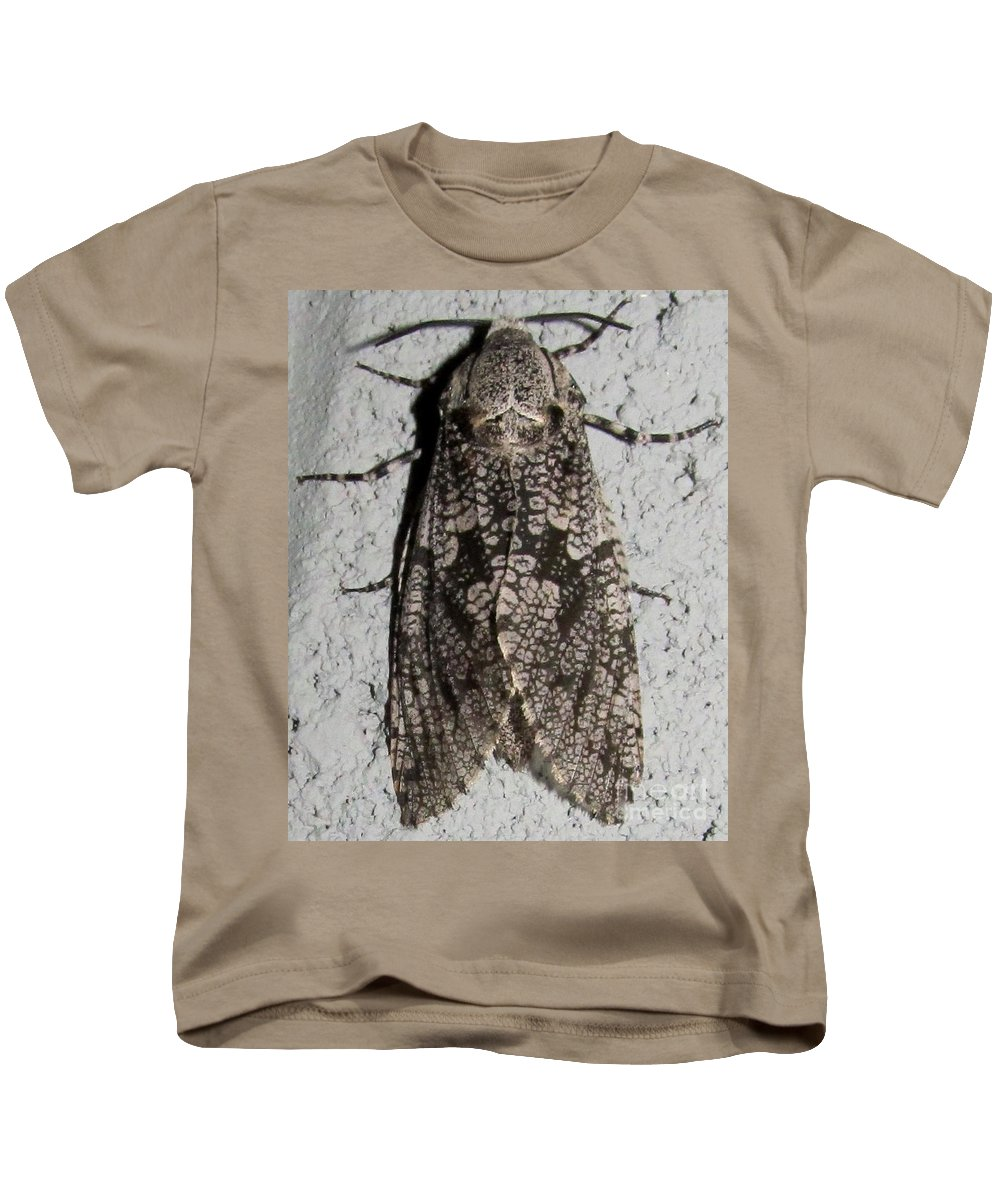 Goat Moth Large Gray Moth Prints Big Gray Moth Images Nocturnal Creatures Of The Night Mariposa Natural Gray Patterns North American Moth Species Appalachian Moths Of The Chesapeake Bay Region Rare Moths Rare Insects Kids T-Shirt featuring the photograph Goat Moth by Joshua Bales