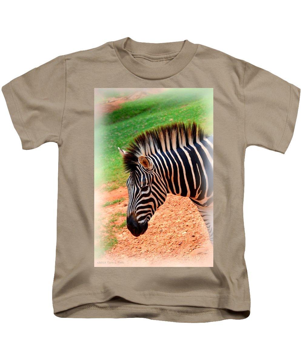 Hartman Zebra Kids T-Shirt featuring the photograph Hartman Zebra by Tara Potts