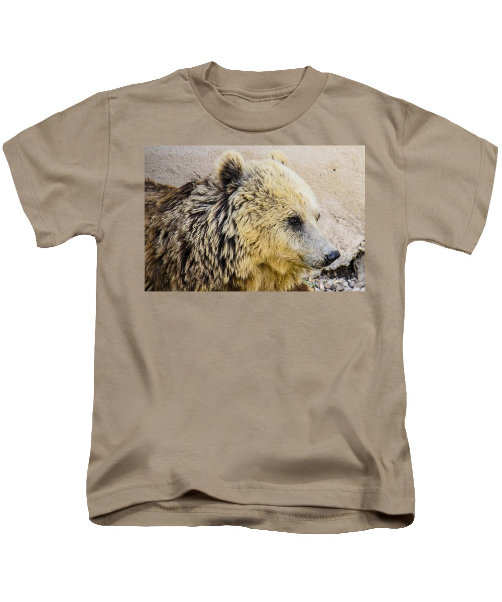 Animal Photographs Kids T-Shirt featuring the photograph Hungry Bear by Sotiris Filippou