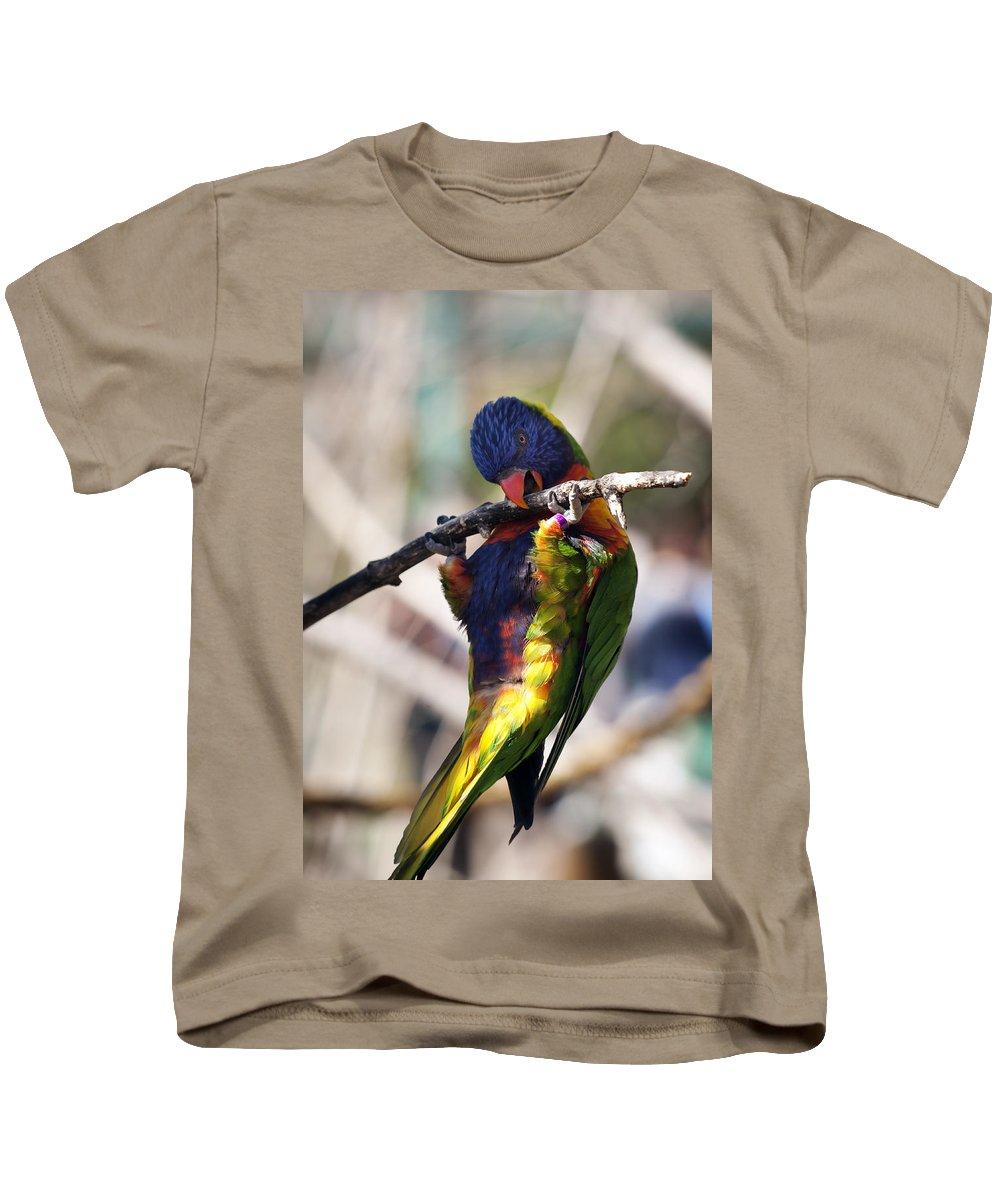 Zoo Kids T-Shirt featuring the photograph Lorikeet Bird by Marilyn Hunt