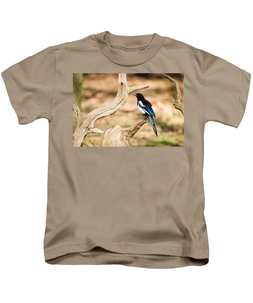 Animal Kids T-Shirt featuring the photograph Magpie by David Head