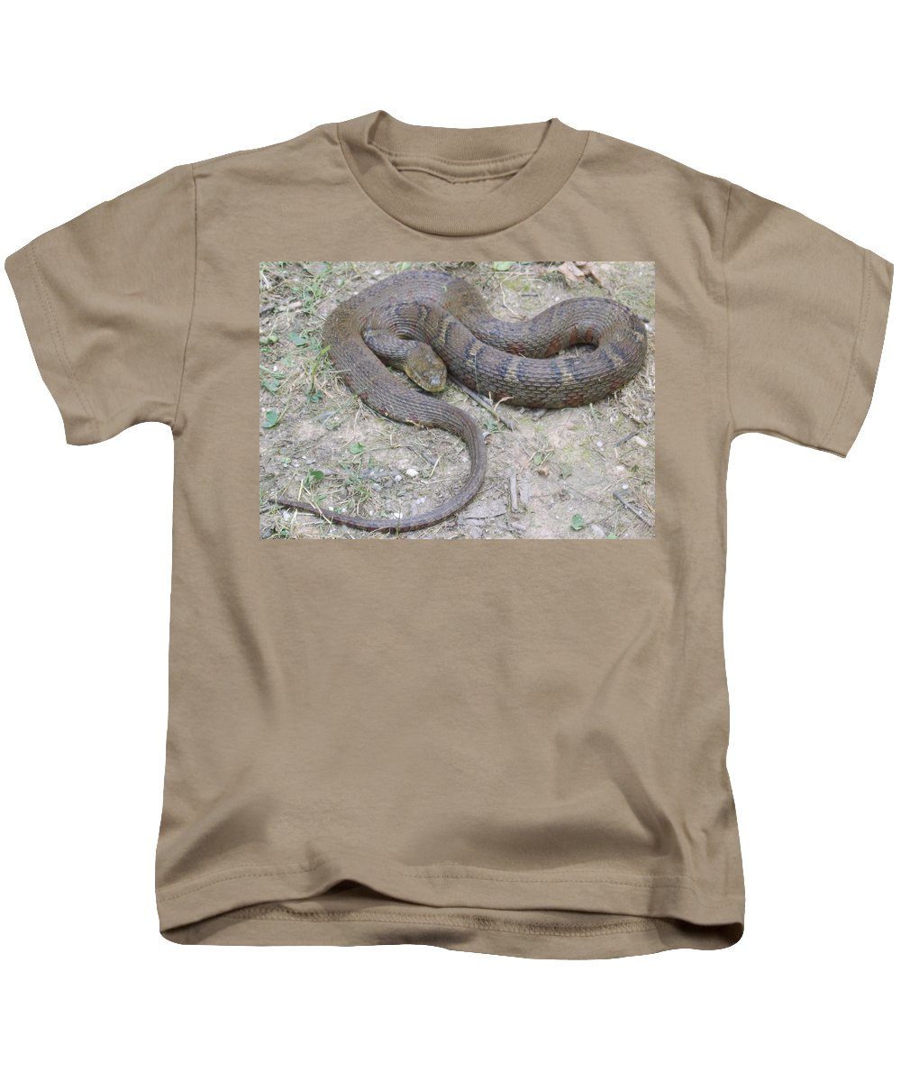 Red Banded Northern Water Snake Photographs Watersnake Canvas Prints Nonvenomous Serpent Reptile Ecology Biodiversity Nature Wildlife River Stream Pond Lake Creek Great Falls Maryland Fauna Kids T-Shirt featuring the photograph Northern Water Snake by Joshua Bales
