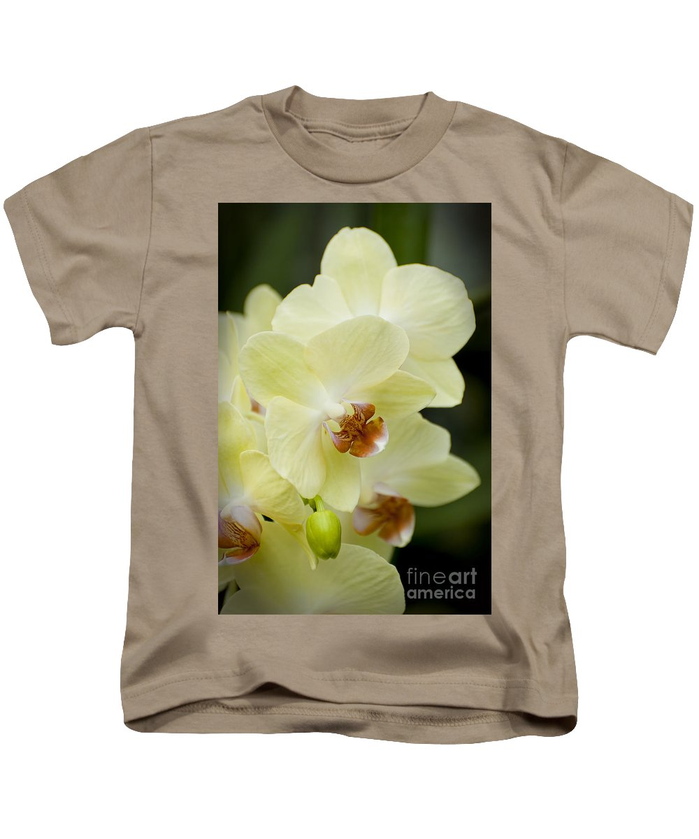 Orchids Kids T-Shirt featuring the photograph Orchids Pictures 34 by World Wildlife Photography