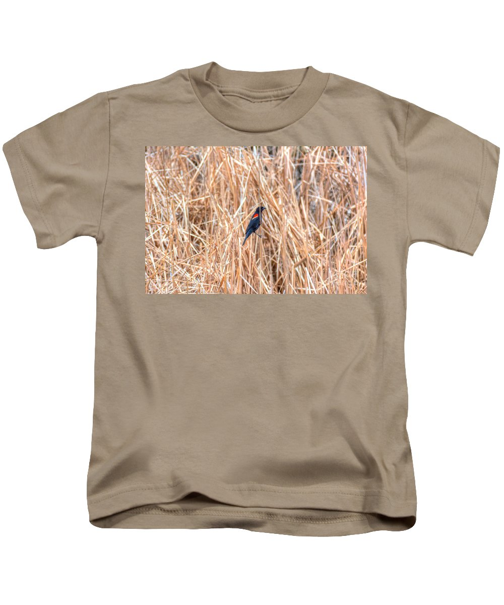 Red Wing Blackbird Kids T-Shirt featuring the photograph Red Wing Blackbird by M Dale