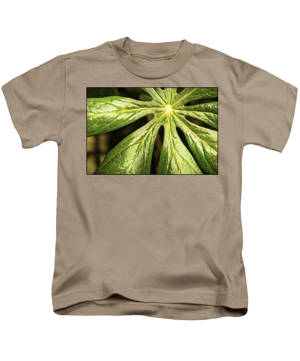 Usa Kids T-Shirt featuring the photograph Rising Star The Mayapple Of Spring by LeeAnn McLaneGoetz McLaneGoetzStudioLLCcom