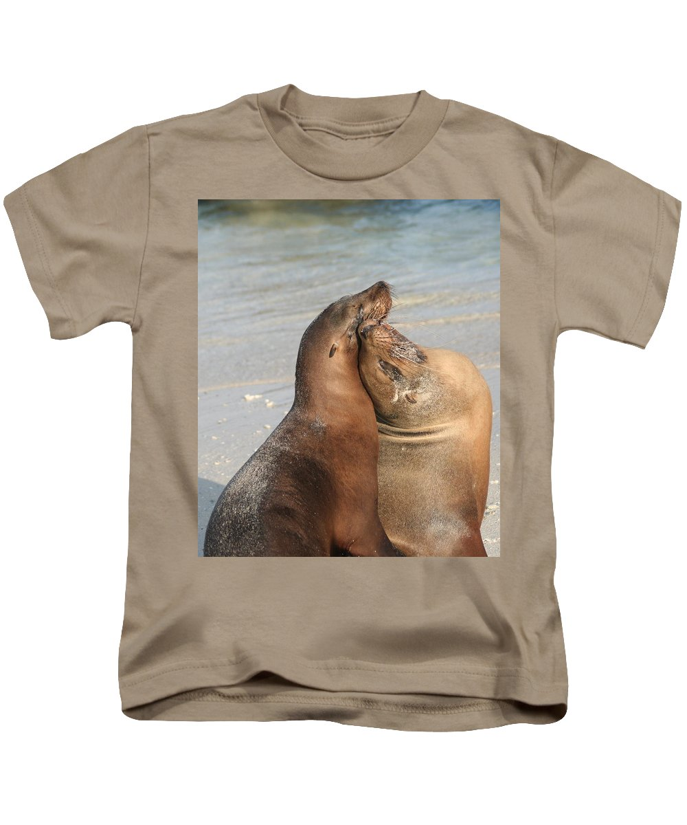 Sea Lion Kids T-Shirt featuring the photograph Sea Lions In Love by Laurel Talabere