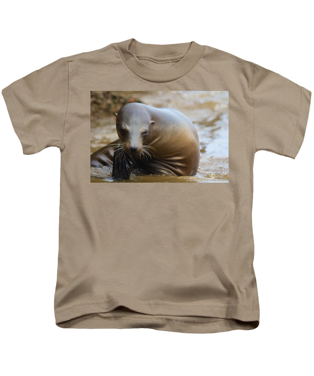 Sealion Kids T-Shirt featuring the photograph Sealion Mugs For The Camera by Allan Morrison