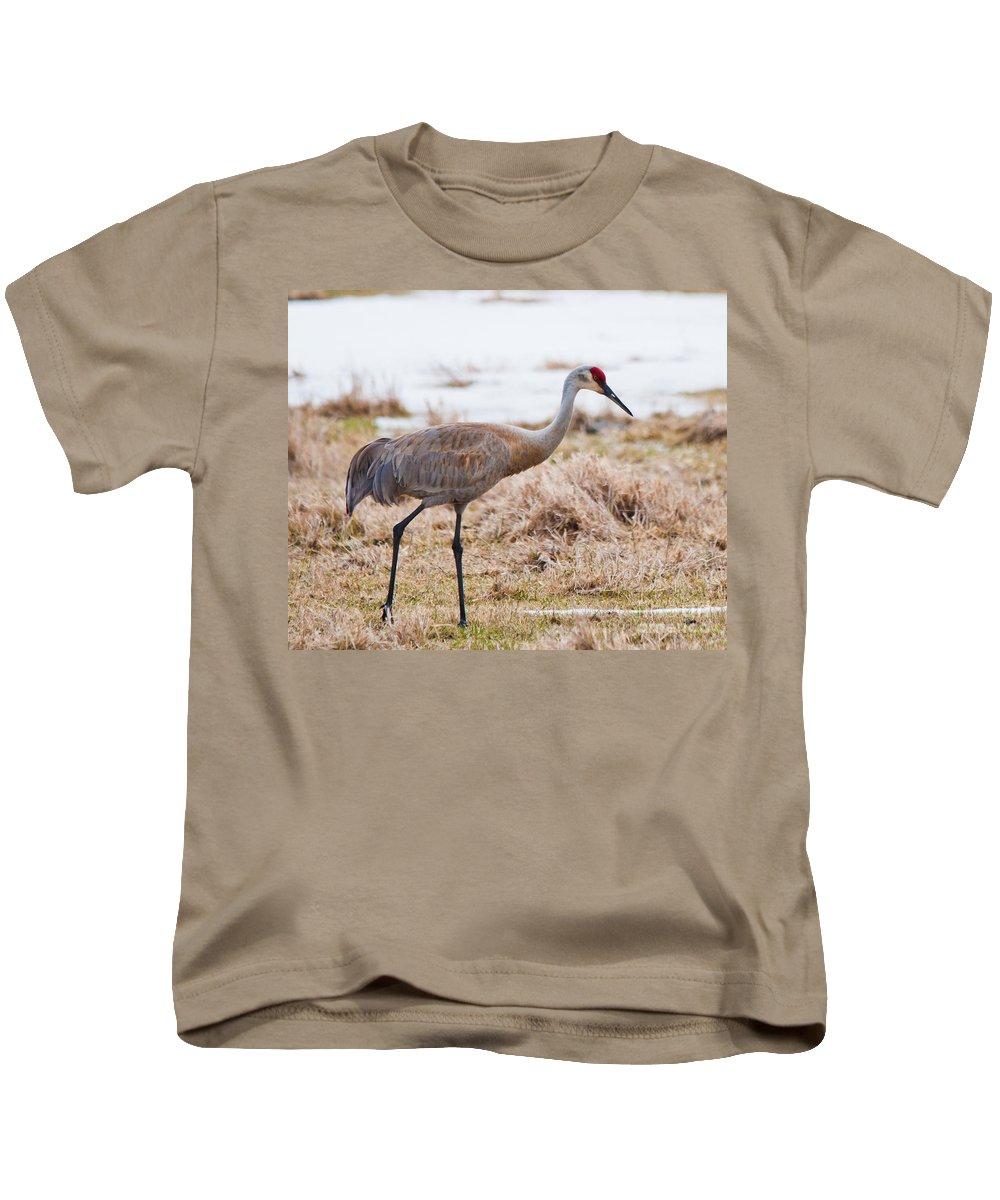 Kids T-Shirt featuring the photograph Spring Crane by Cheryl Baxter
