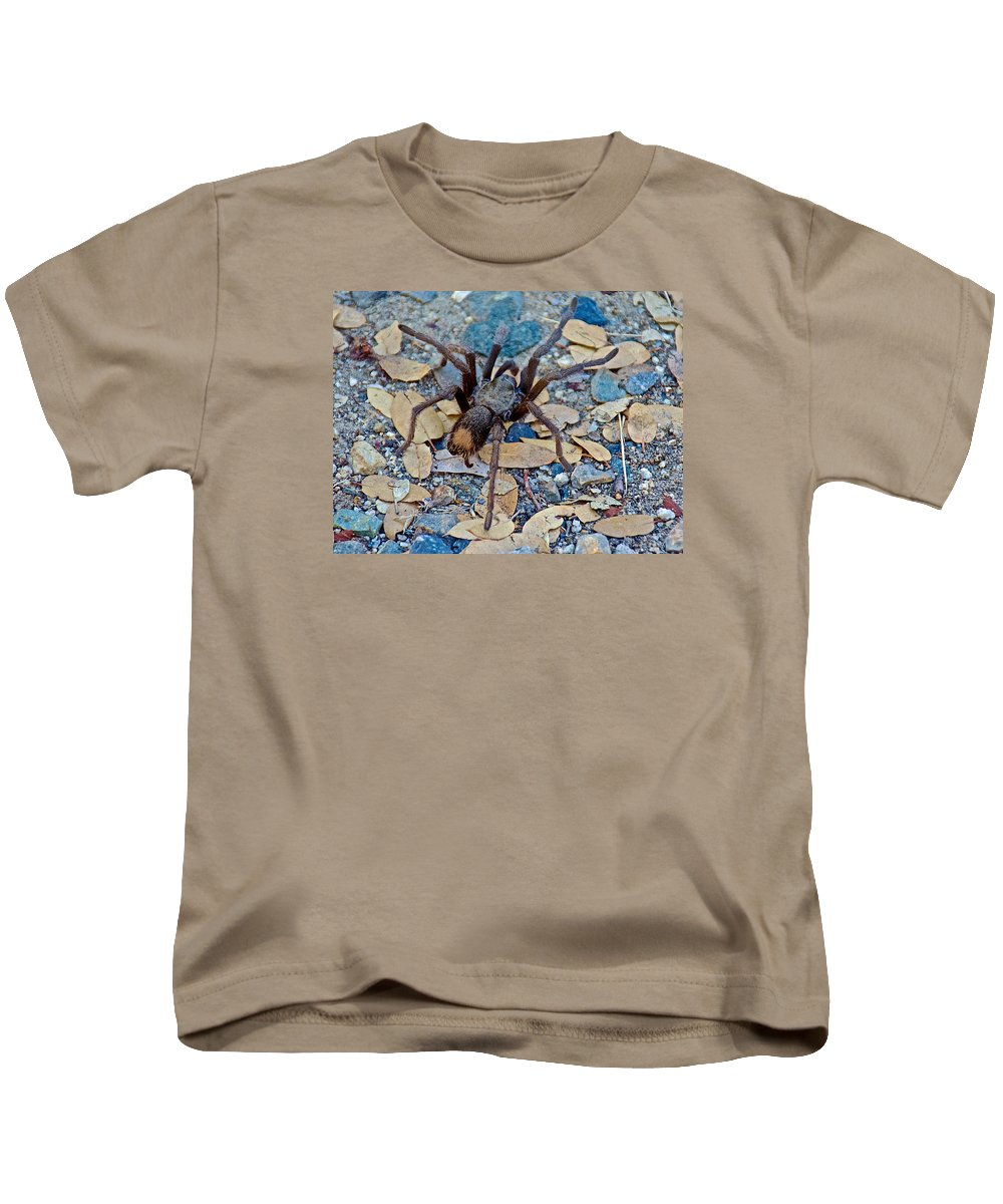 Tarantula Spider In Park Sierra Near Coarsegold Kids T-Shirt featuring the photograph Tarantula Spider In Park Sierra Near Coarsegold-california by Ruth Hager
