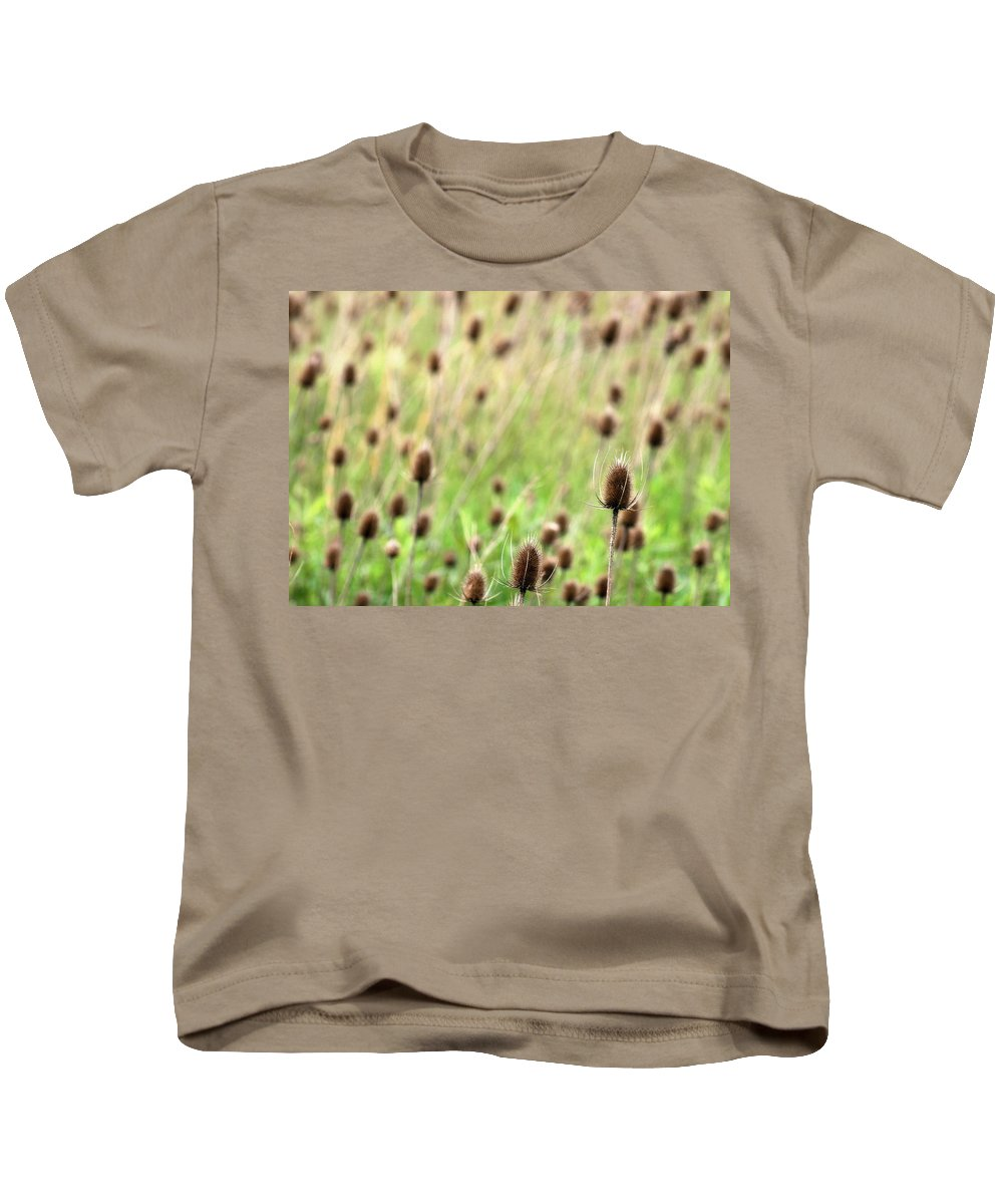 Thistle Kids T-Shirt featuring the photograph Teasel Meadow by Angela Rath