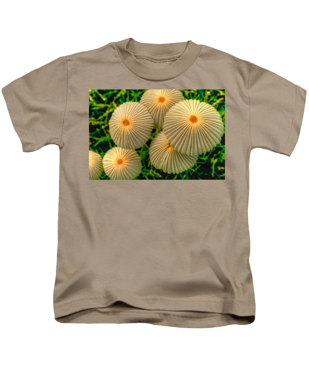 Mushrooms Kids T-Shirt featuring the photograph The Ants Raised Their Umbrellas by Dennis Baswell
