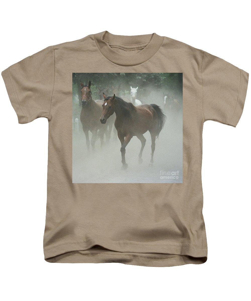 Arabian Horse Kids T-Shirt featuring the photograph The Daughters Of A Desert by Angel Ciesniarska
