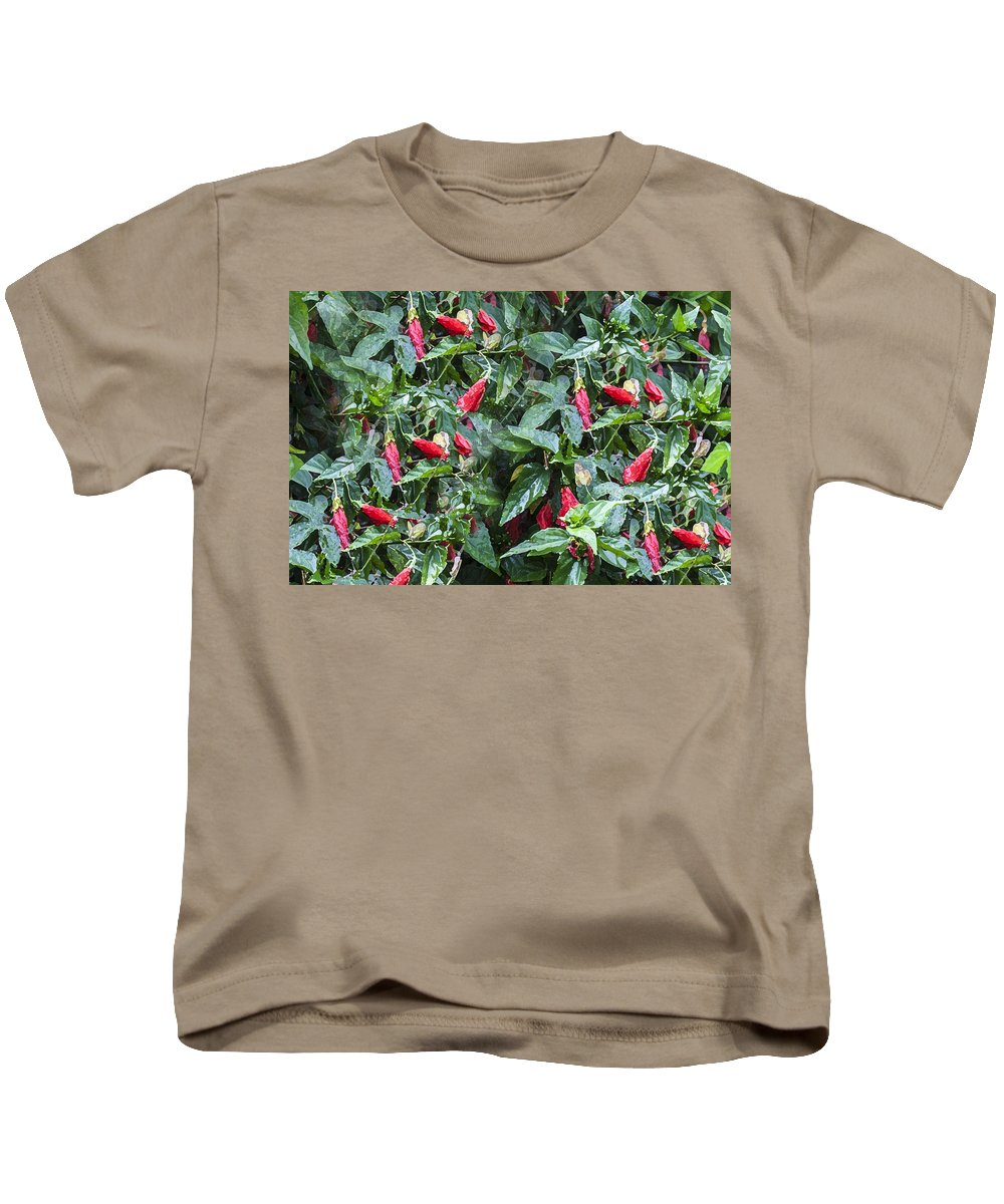 Malvaviscus Arboreus Var. Drummondii Kids T-Shirt featuring the photograph Turks Cap And Rain Drops by Rich Franco