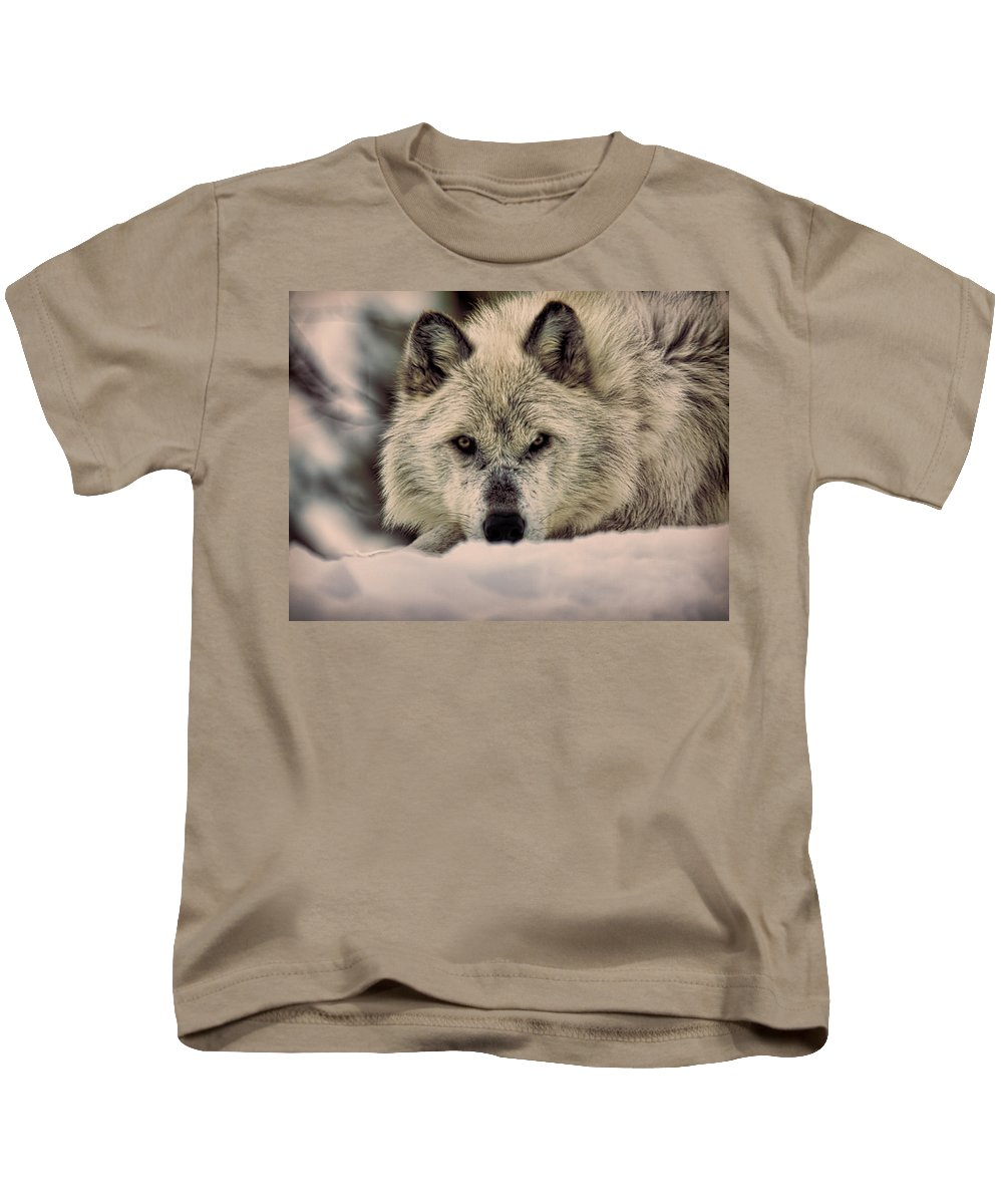 Wolf Kids T-Shirt featuring the photograph Wolf In Snow by Steve McKinzie