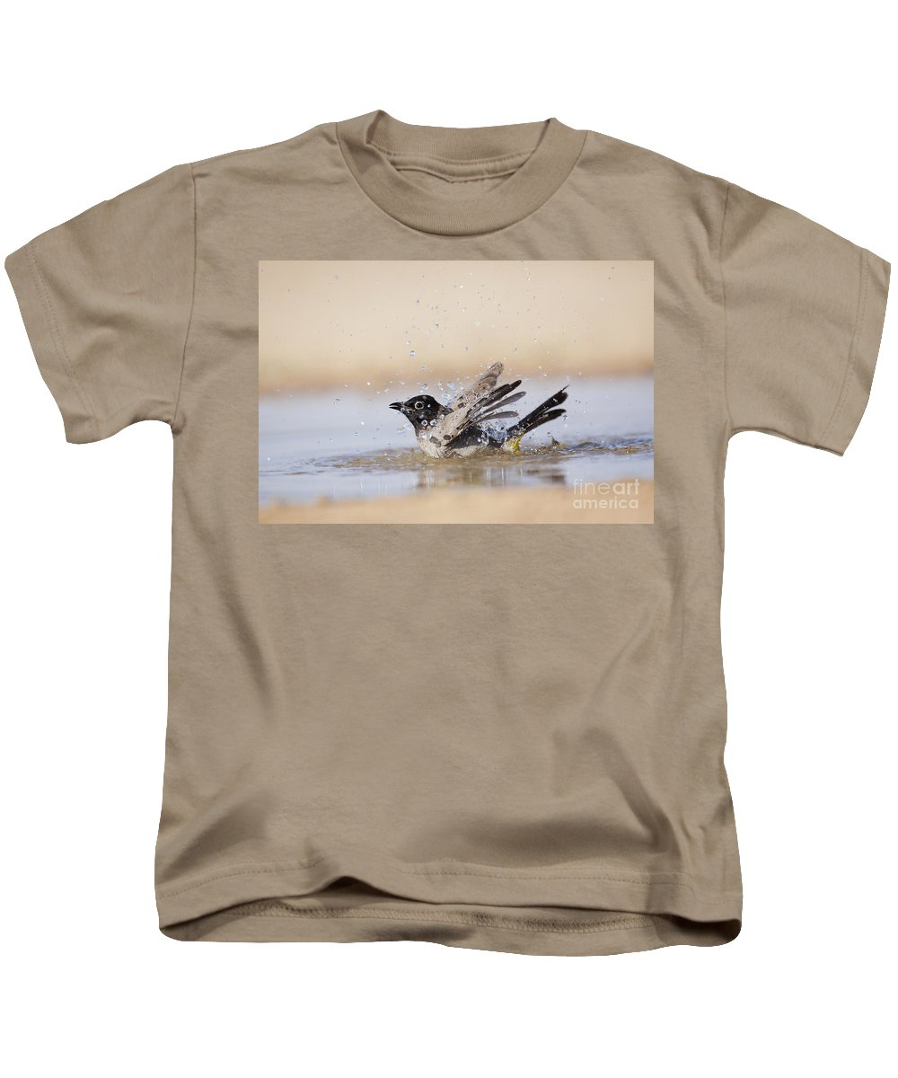 Ornithology Kids T-Shirt featuring the photograph Yellow-vented Bulbul by Eyal Bartov