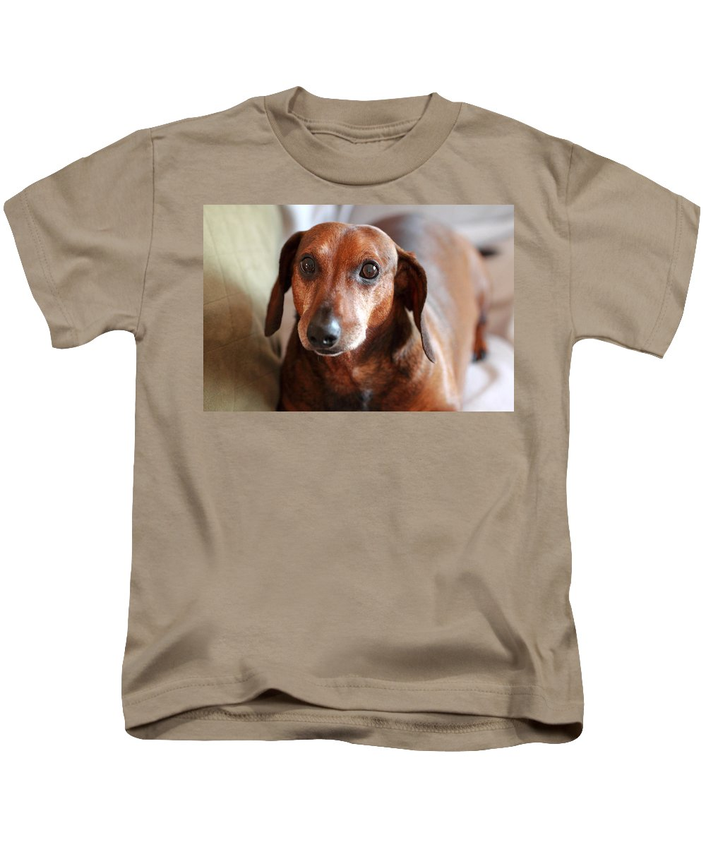 Dachshund Kids T-Shirt featuring the photograph You Looking At Me by Scott Hill
