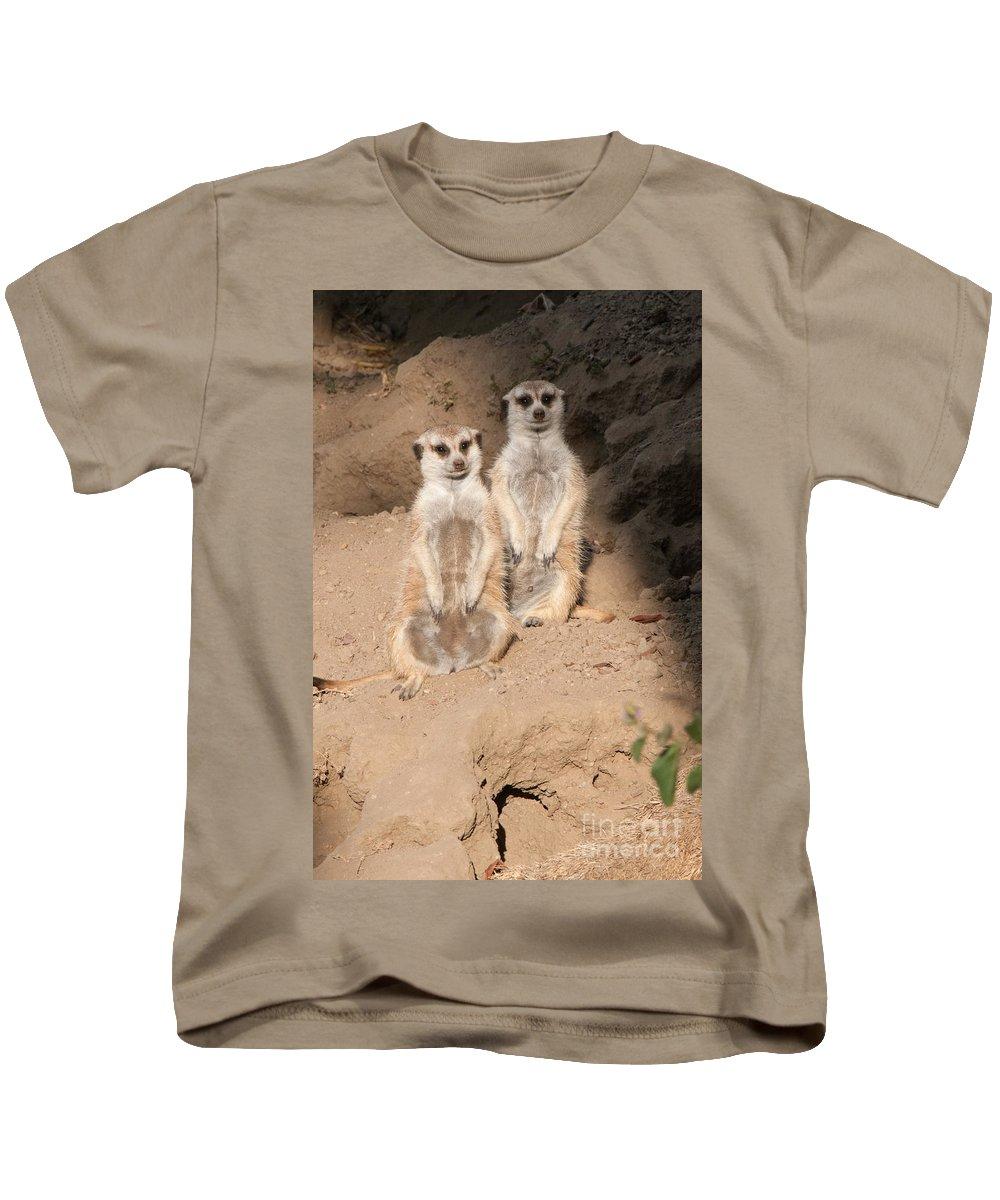 Animals Kids T-Shirt featuring the digital art Meerkat by Carol Ailles