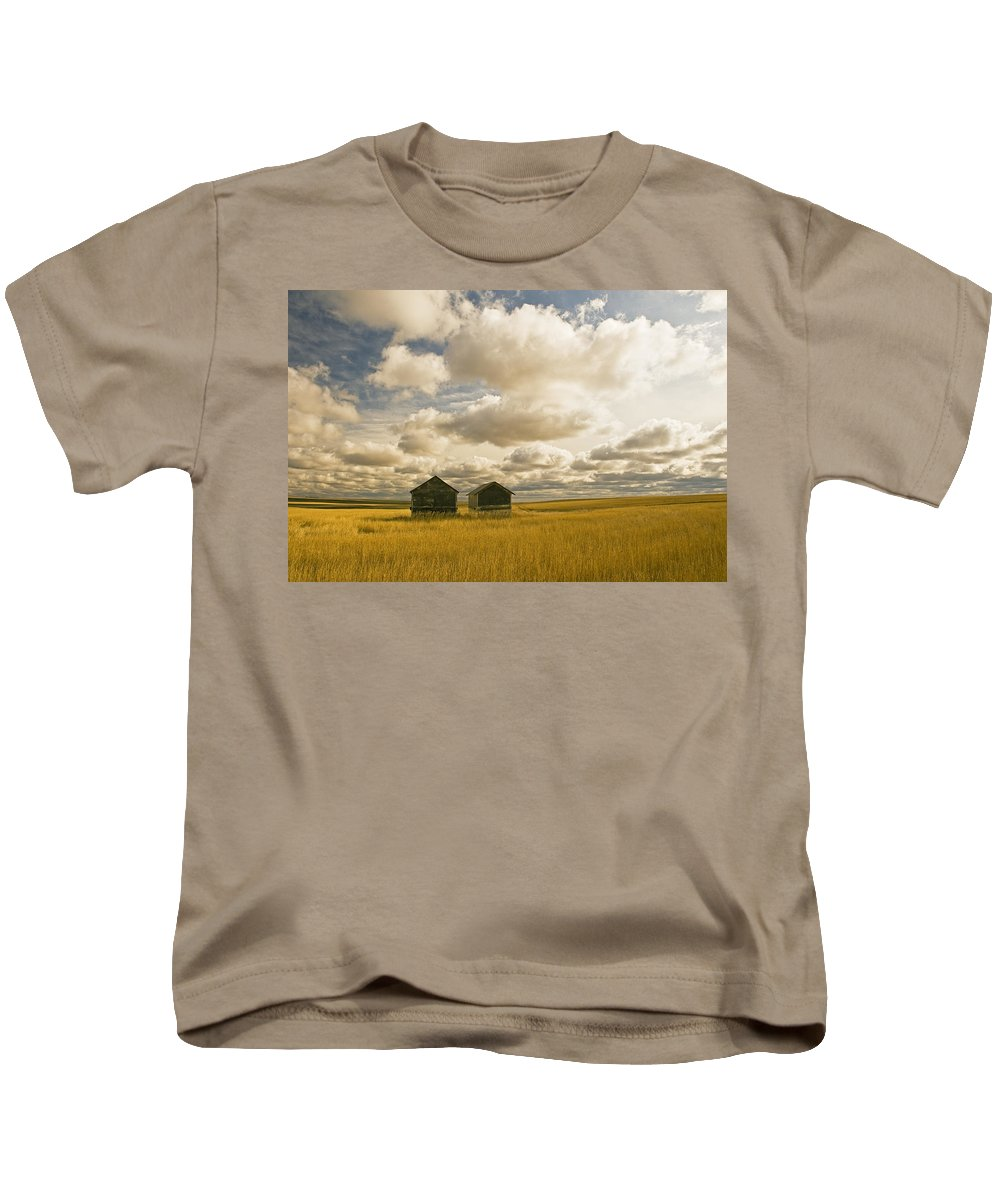 Agriculture Kids T-Shirt featuring the photograph Abandoned Grain Bins With Hail Damaged by Dave Reede