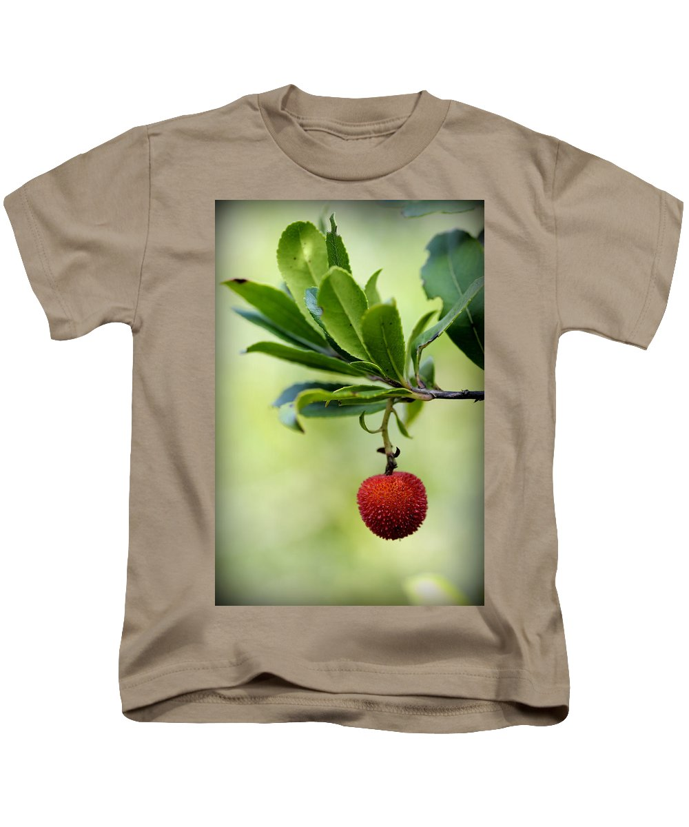 Up Kids T-Shirt featuring the photograph Autumn Fruits In Red by Pedro Cardona Llambias