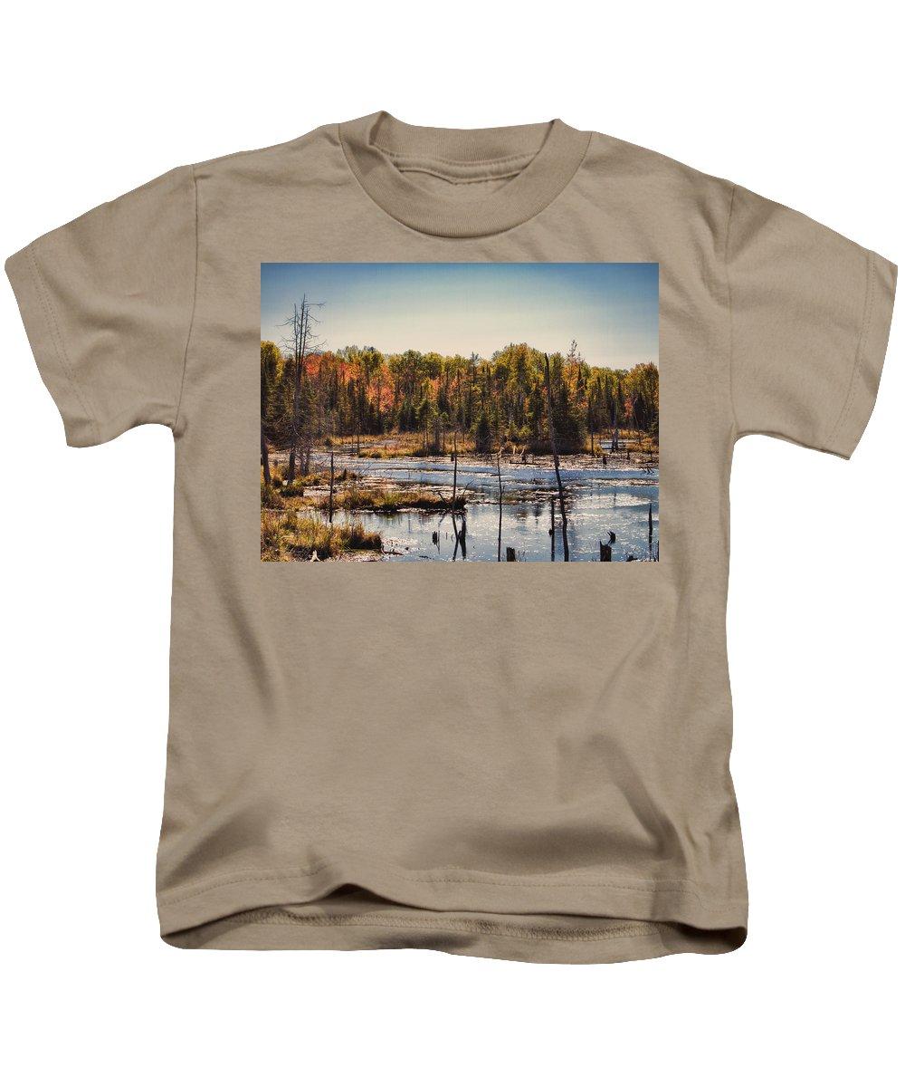 Autumn Kids T-Shirt featuring the photograph Autumn Wetland by Jo-Anne Gazo-McKim