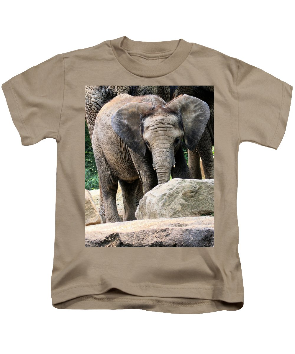 African Elephant Kids T-Shirt featuring the photograph Baby Elephant by Angela Rath