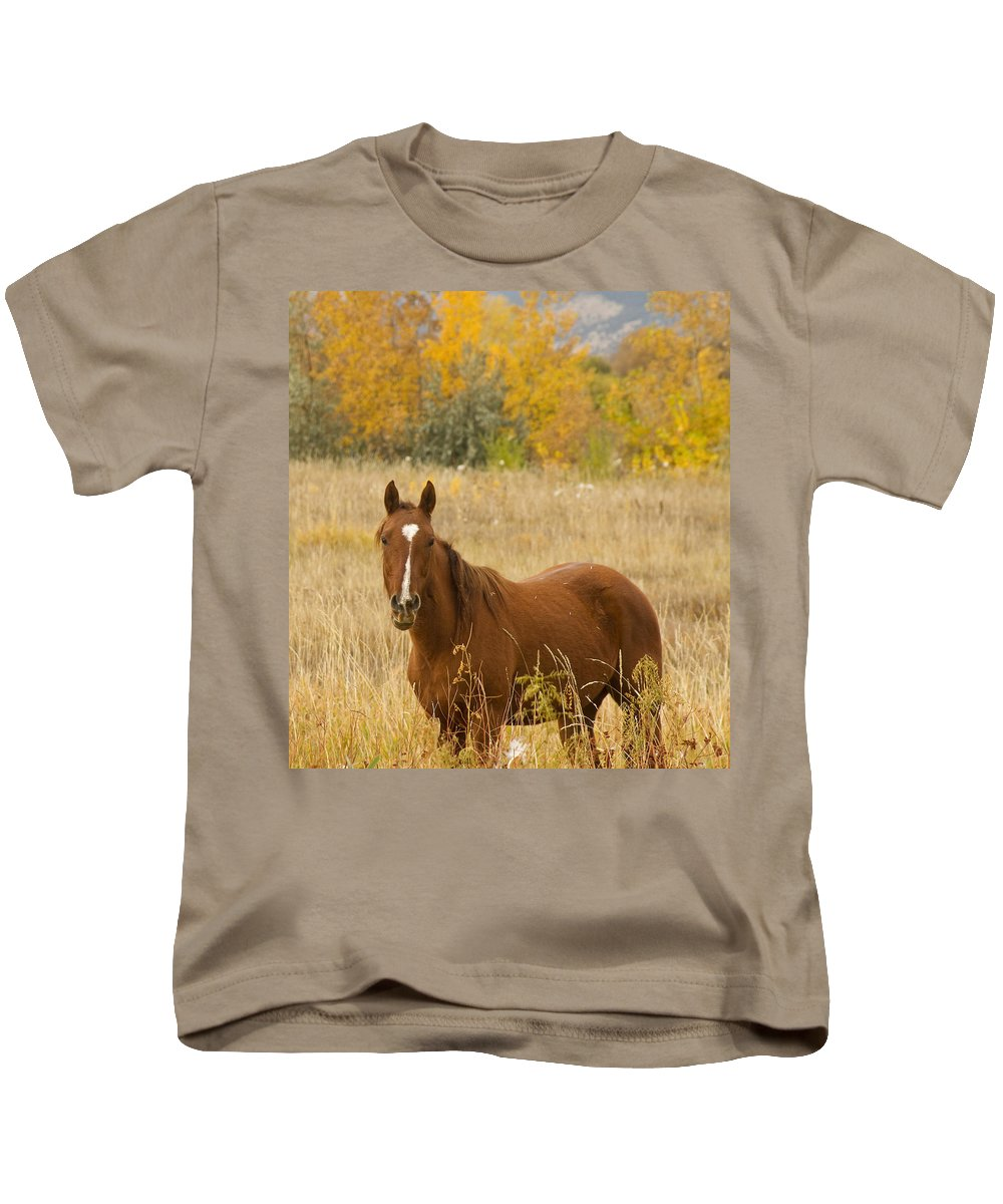 Horse Kids T-Shirt featuring the photograph Beautiful Chestnut Horse by James BO Insogna