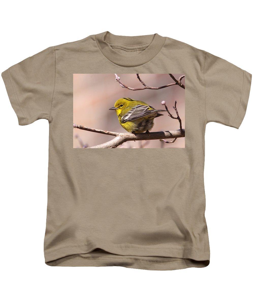 Pine Warbler Kids T-Shirt featuring the photograph Bird - Pine Warbler - Detail by Travis Truelove