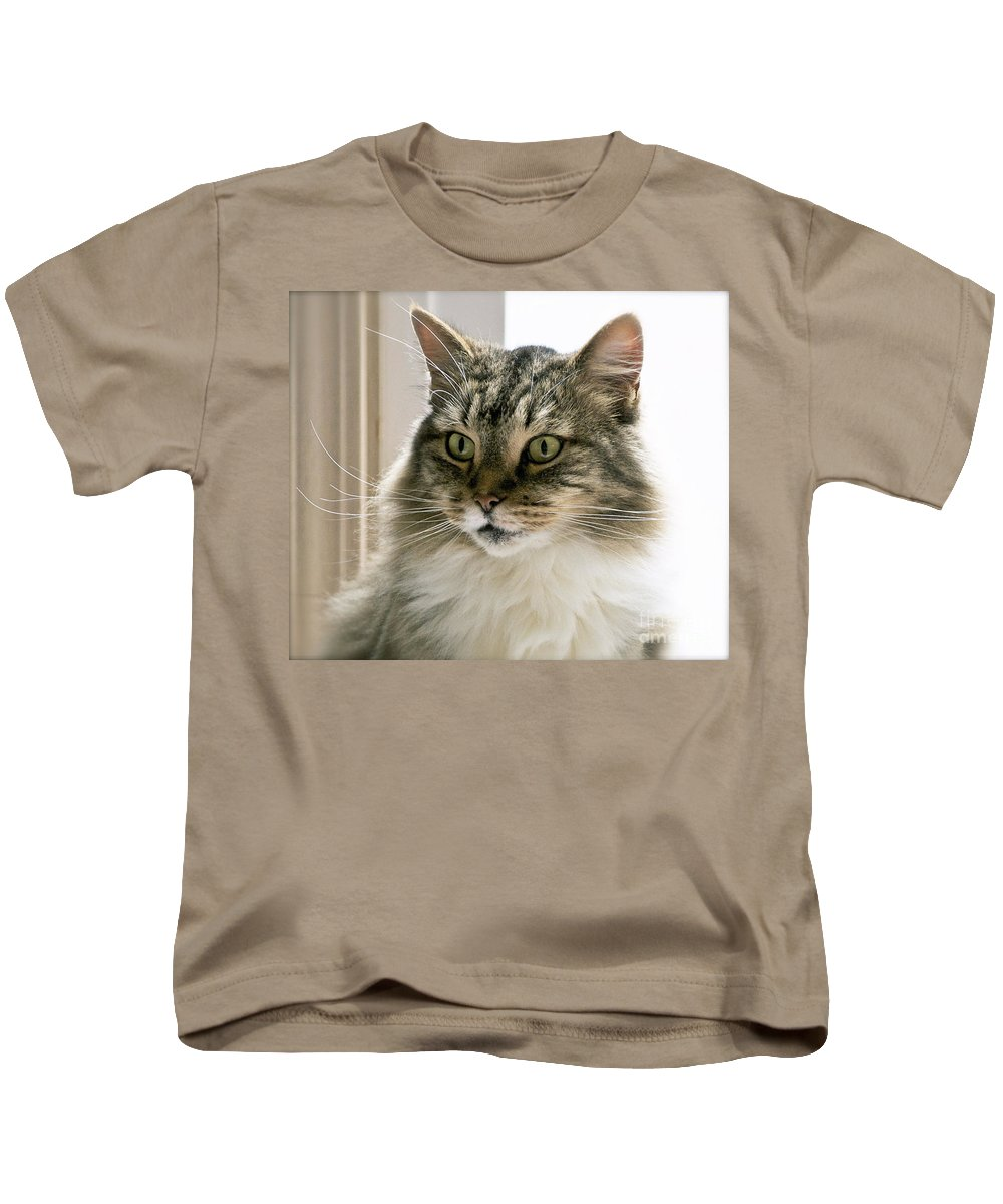 Cat Kids T-Shirt featuring the photograph Cats Are Magical by Gwyn Newcombe