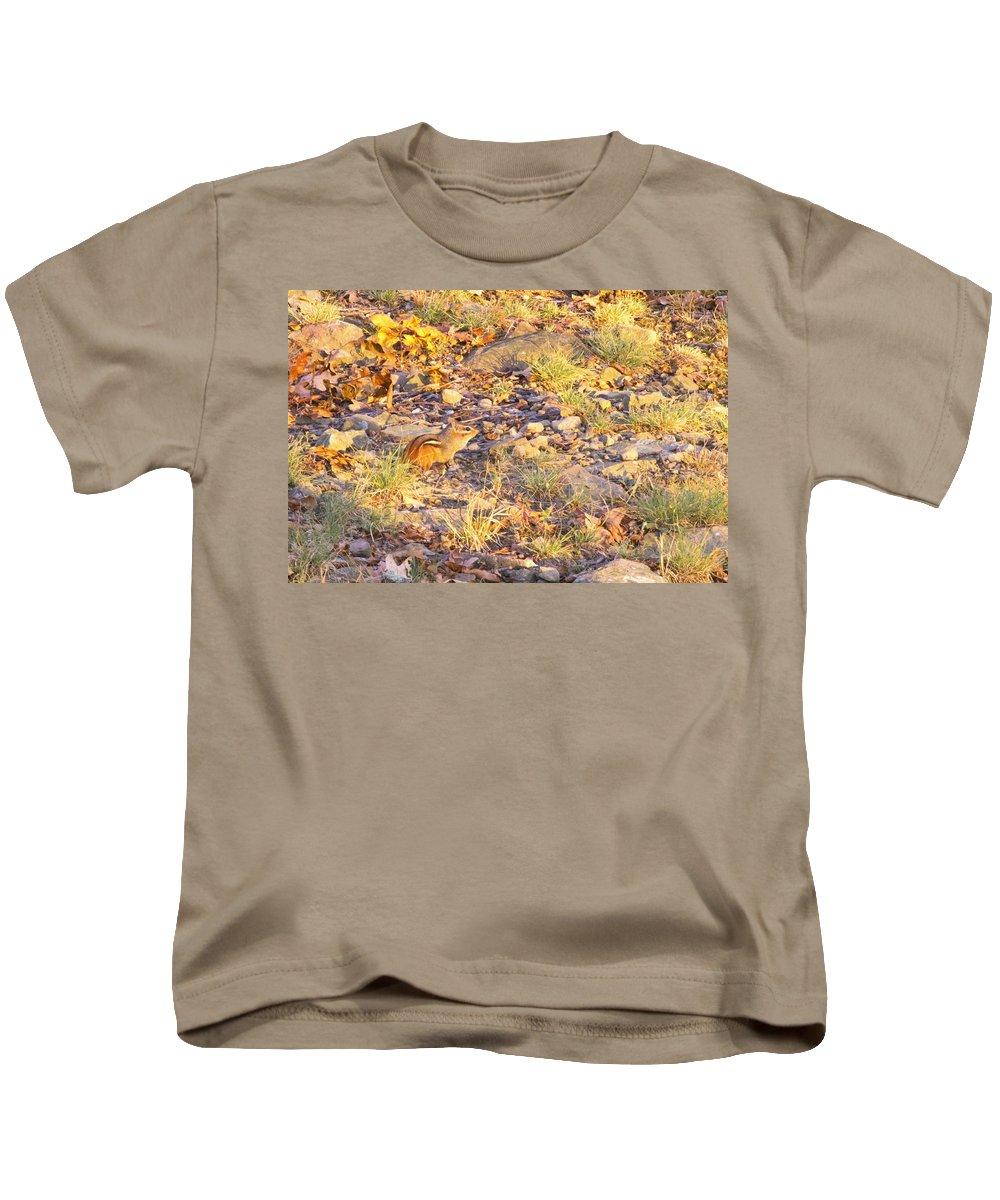 Chipmunk Kids T-Shirt featuring the photograph Chipmunk V1 by Douglas Barnard