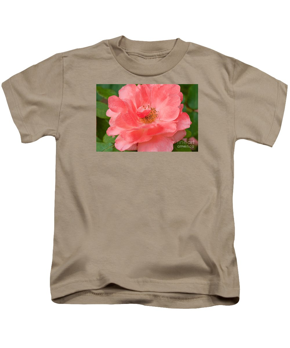 Rose Kids T-Shirt featuring the photograph Coral Rose Portrait by Regina Geoghan