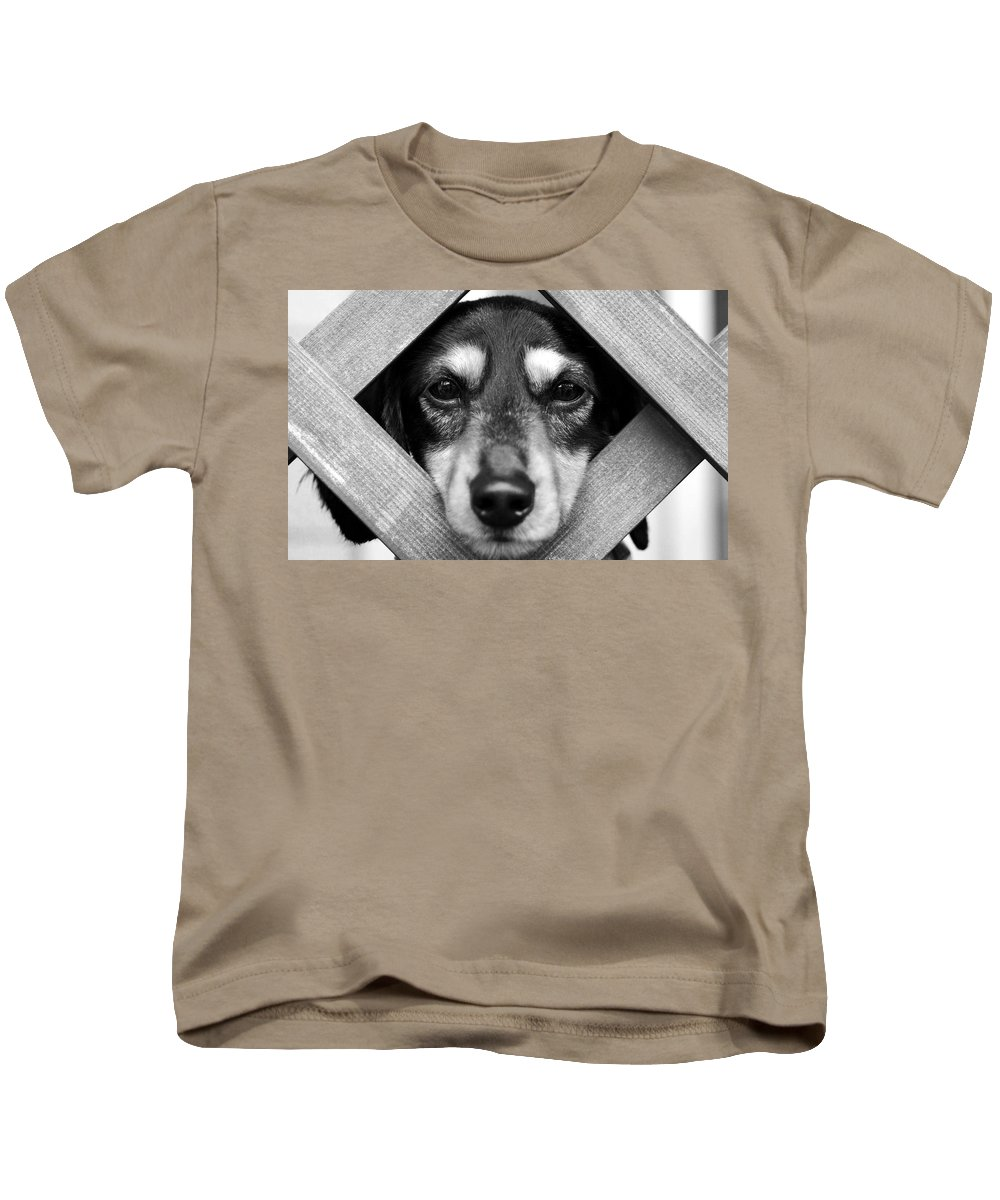 Dog Kids T-Shirt featuring the photograph Doberman Puppy In Fence by Sumit Mehndiratta