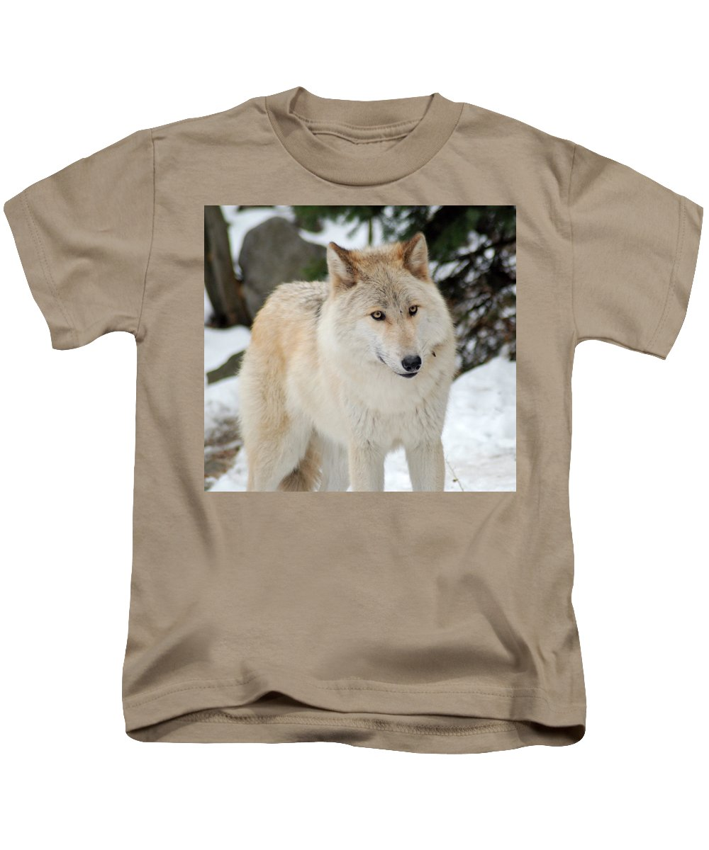 Wolf Kids T-Shirt featuring the photograph Happy Wolf by Richard Bryce and Family