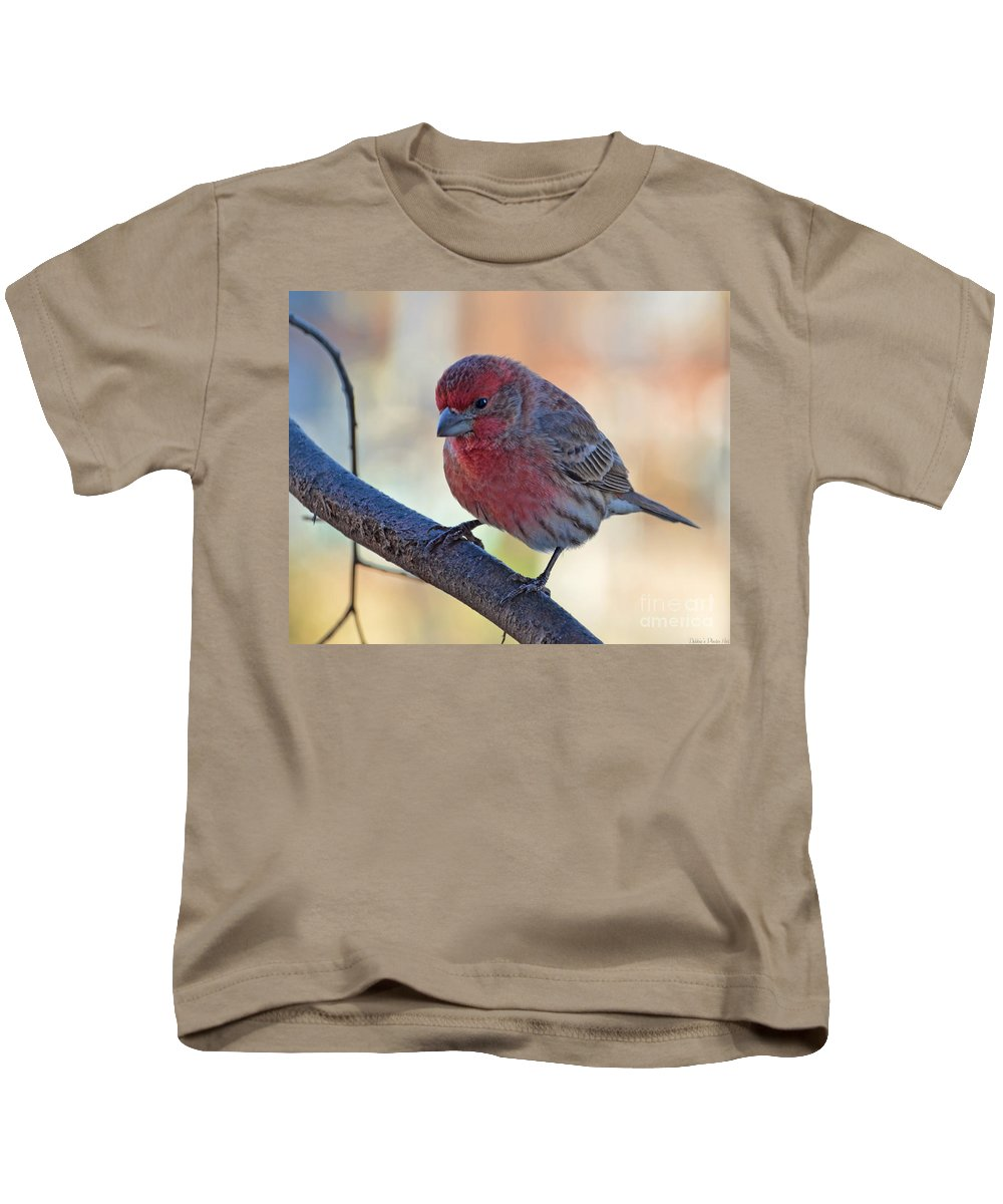Animal Kids T-Shirt featuring the photograph Housefinch IIi by Debbie Portwood