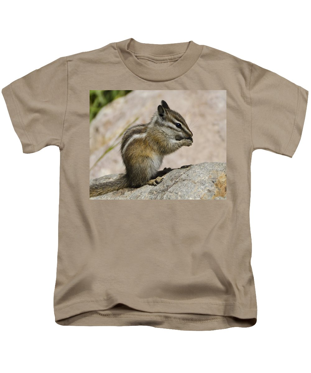 Chipmunk Kids T-Shirt featuring the photograph Hungry by Jon Berghoff