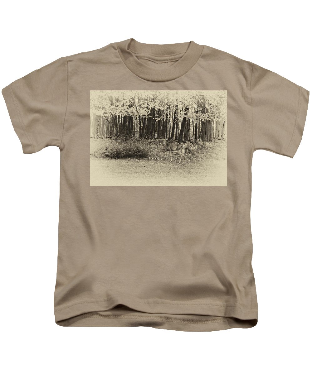 West Virginia Kids T-Shirt featuring the photograph In A Yellow Wood Antique by Steve Harrington