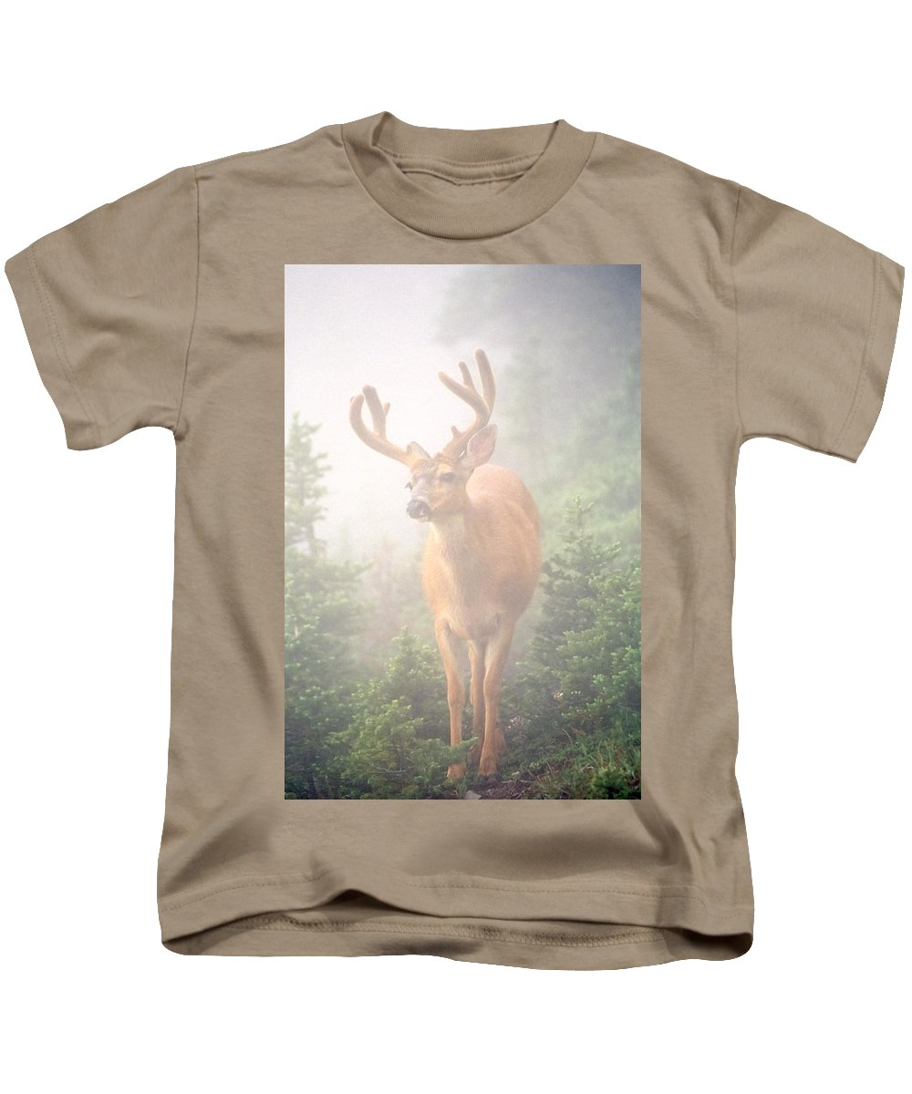 Deer Kids T-Shirt featuring the photograph In The Mist by Tom and Pat Cory
