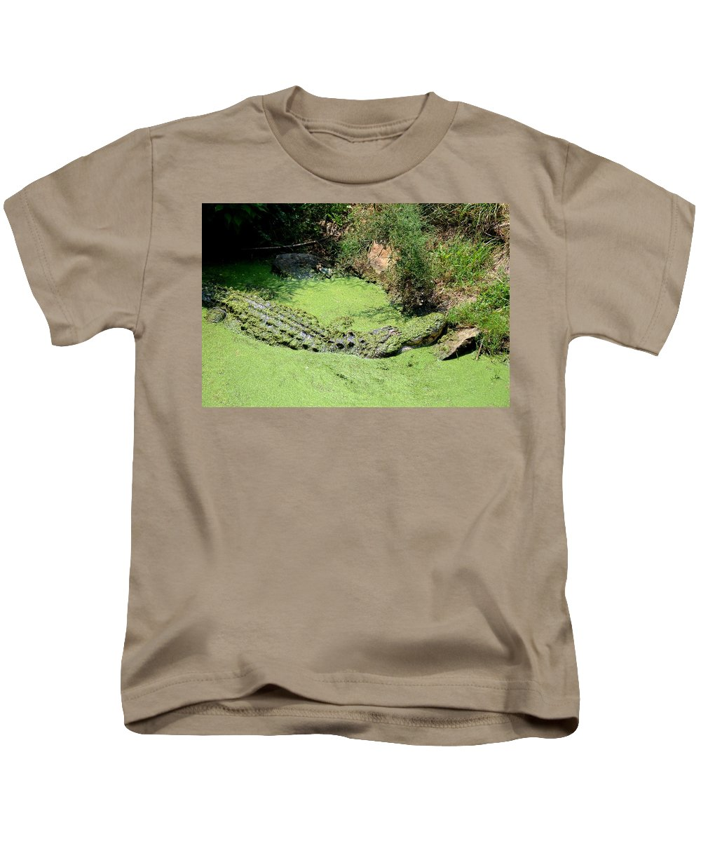 Lies Kids T-Shirt featuring the photograph It Lies In Wait by Maria Urso