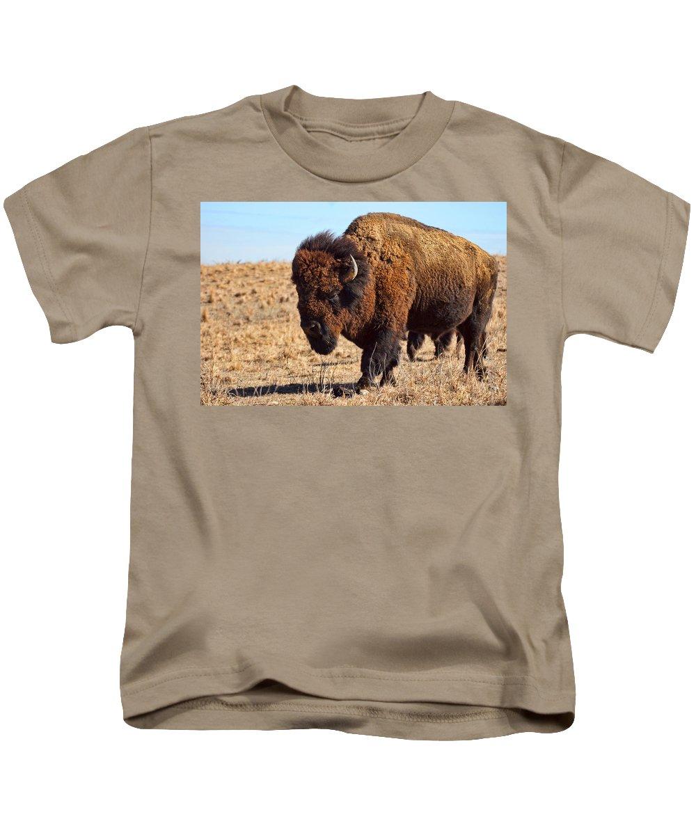 Kansas Kids T-Shirt featuring the photograph Kansas Buffalo by Alan Hutchins