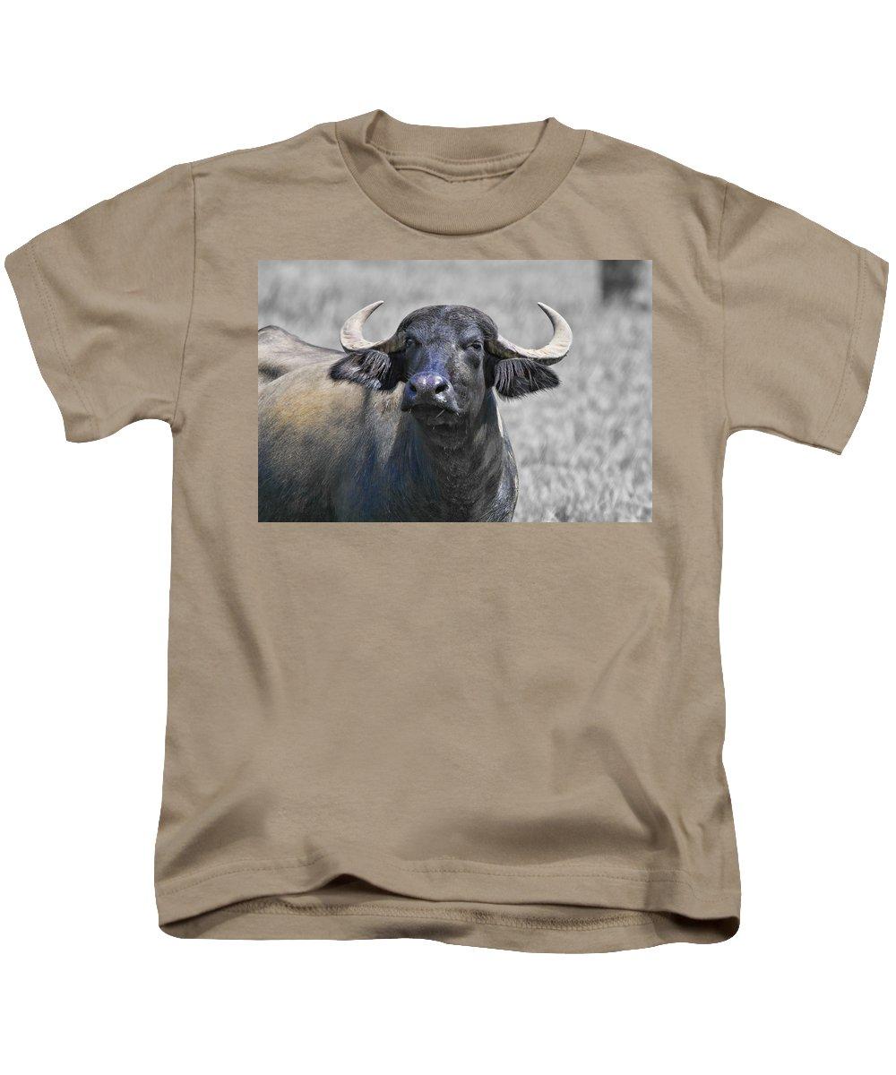 Water Buffalo Kids T-Shirt featuring the photograph Show Of Strength by Douglas Barnard