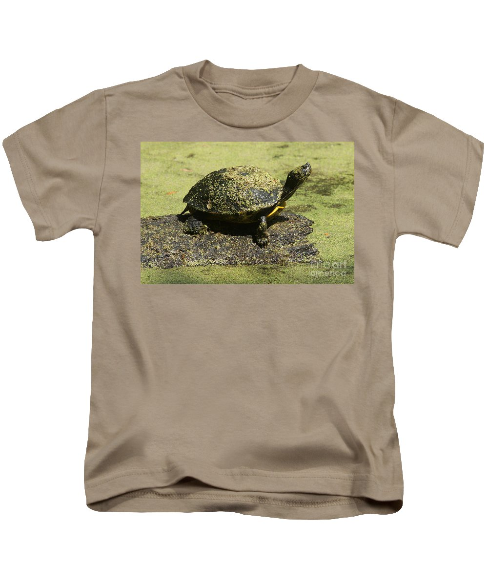 Turtle Kids T-Shirt featuring the photograph Turtle Camouflage by Christiane Schulze Art And Photography